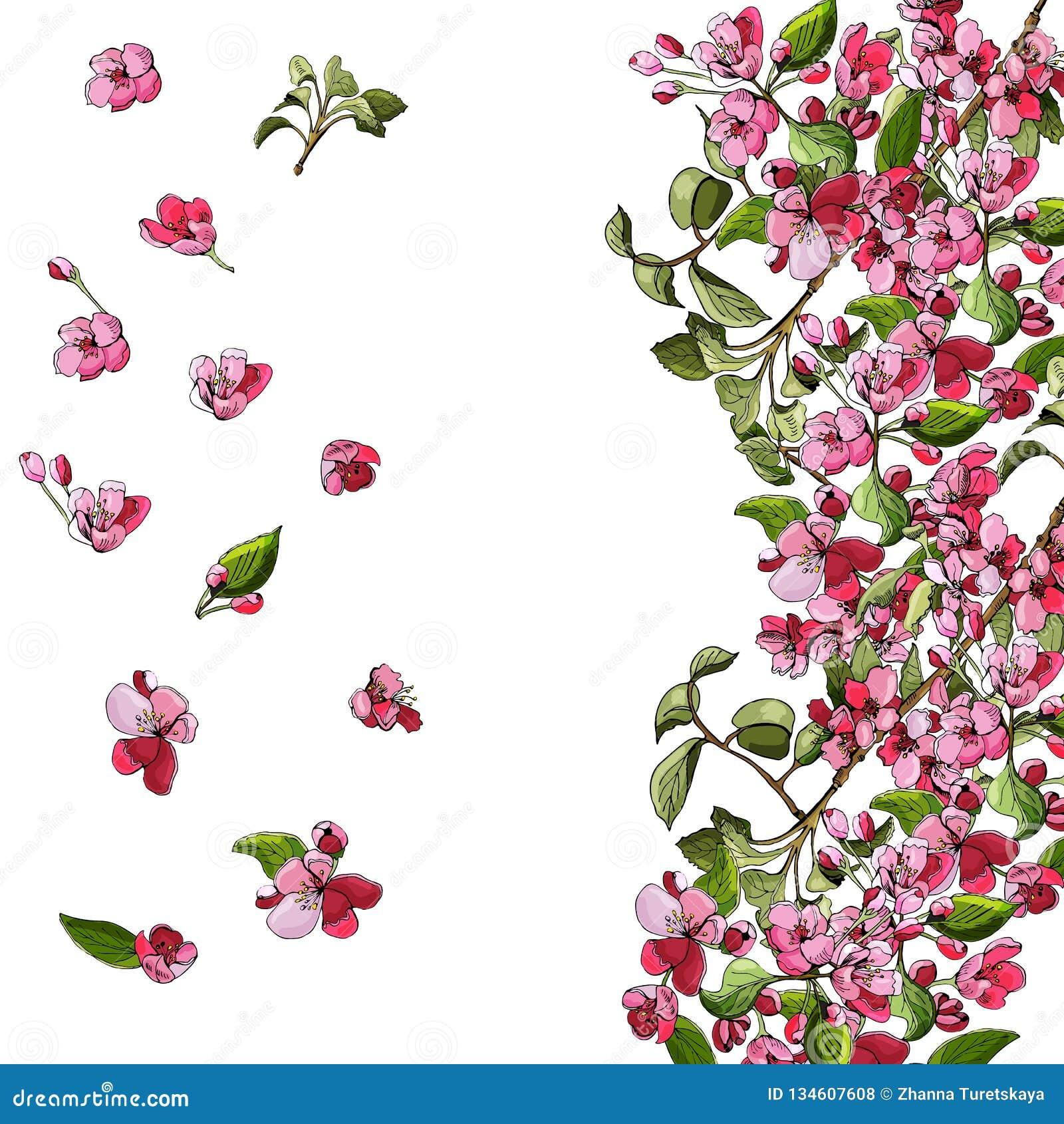 Malplaatje of achtergrond van tot bloei komende roze tak van appelboom en bloemen Hand getrokken gekleurde schets van malusbloeme