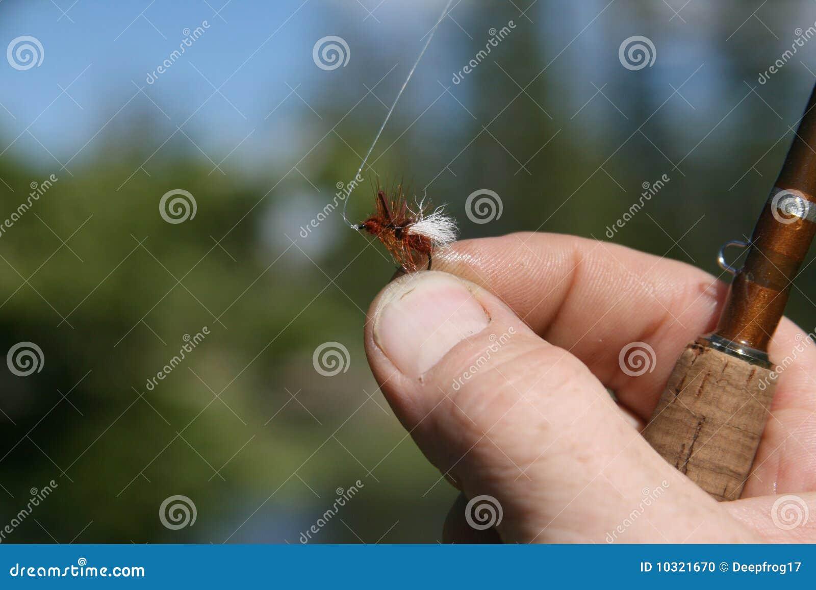 Malutka TARGET1885_1_ komarnica