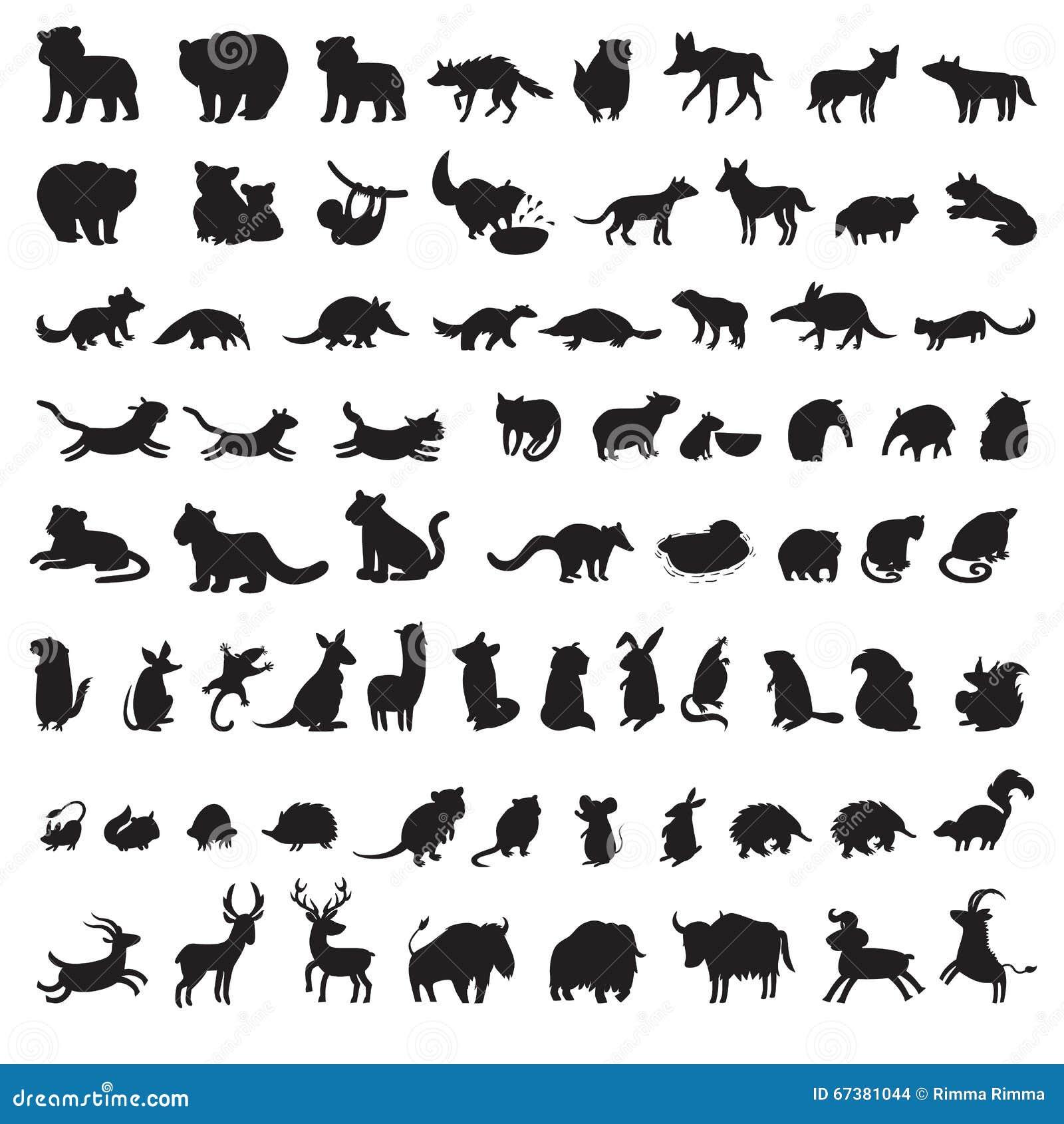 Mamíferos del mundo Sistema grande adicional de siluetas del gris de los animales