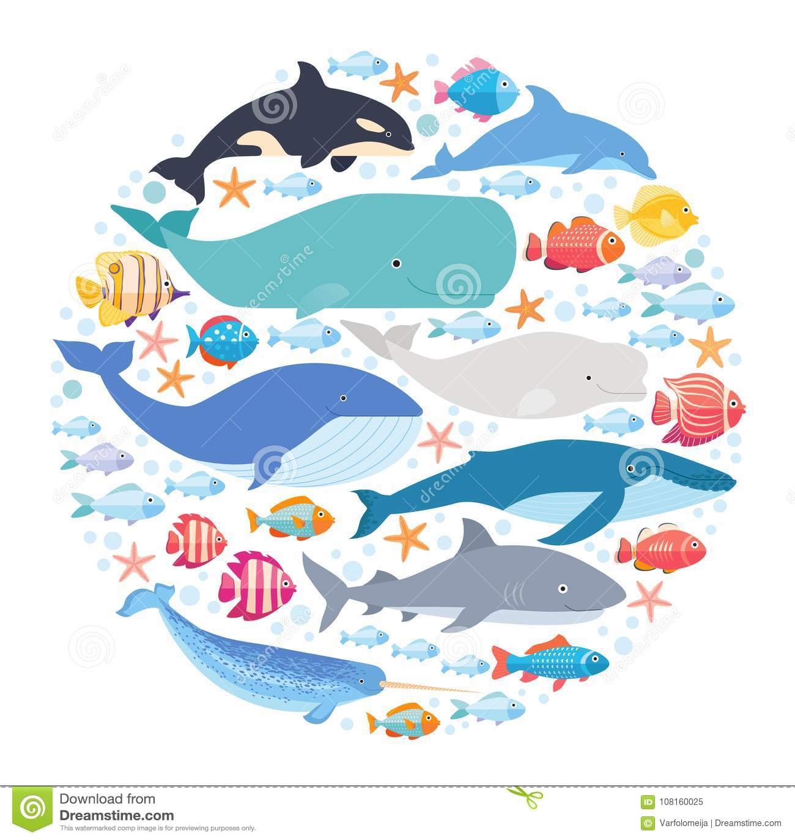 Mamíferos marinhos e peixes ajustados no círculo Narval, baleia azul, golfinho, baleia da beluga, baleia de corcunda, bowhead e e