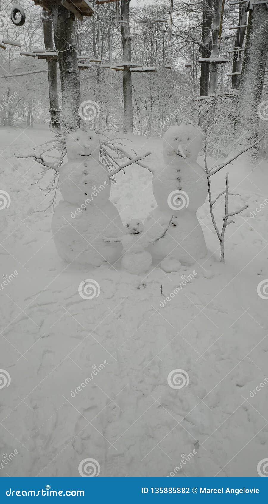 Mama, Vati und Sohn, die draußen im Winter während schwebende Zusammenfassung des Schnees falls