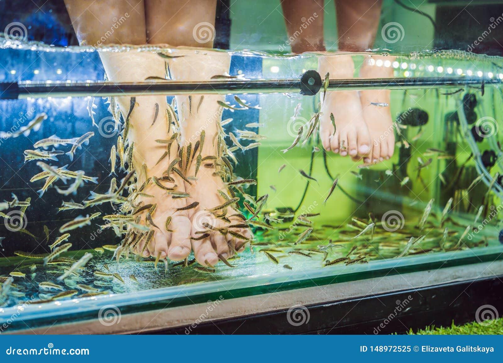 Maman et fils ? la station thermale de poissons