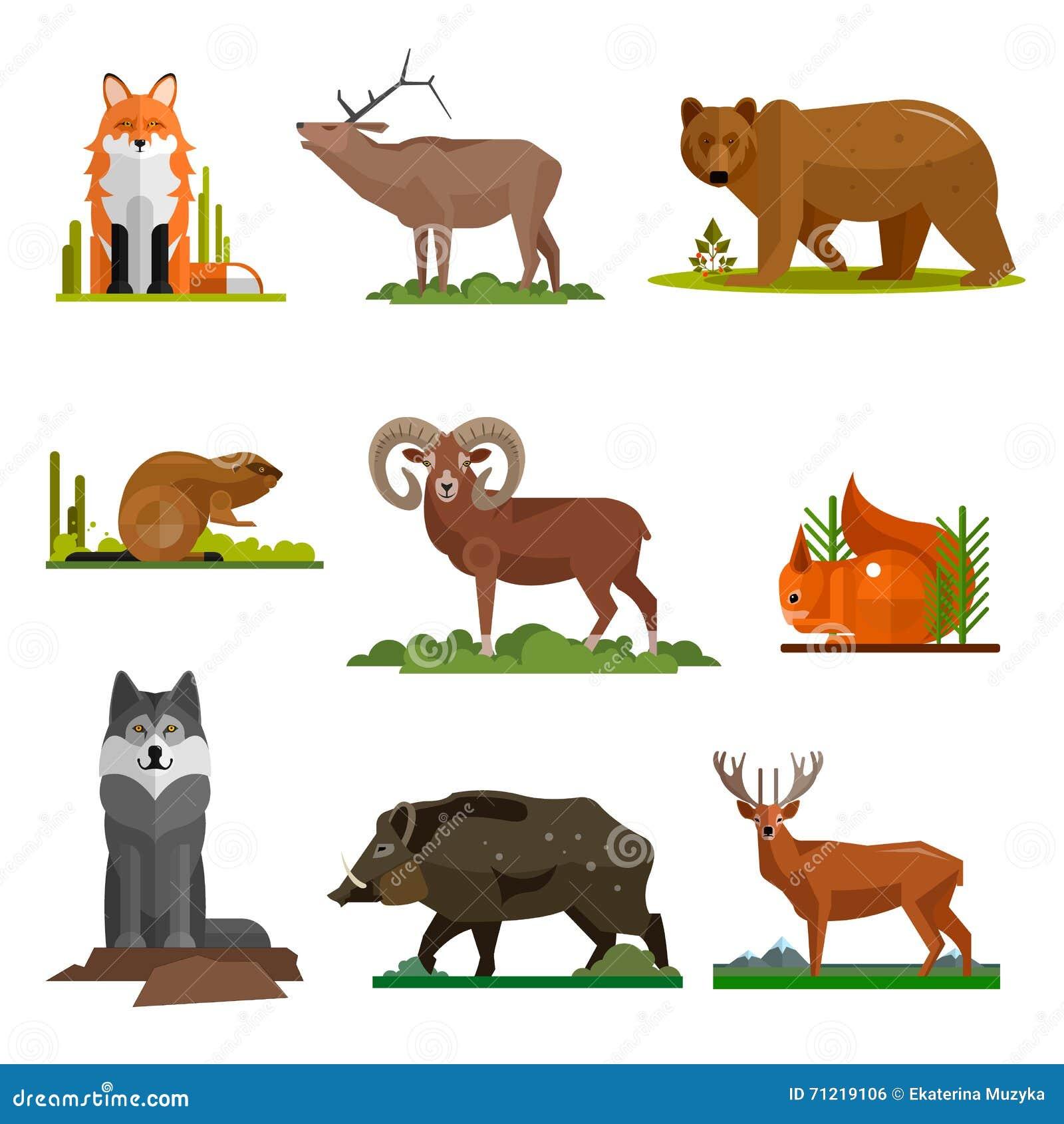 Vector Set Of Cartoon Wild Or Zoo Animals Vector