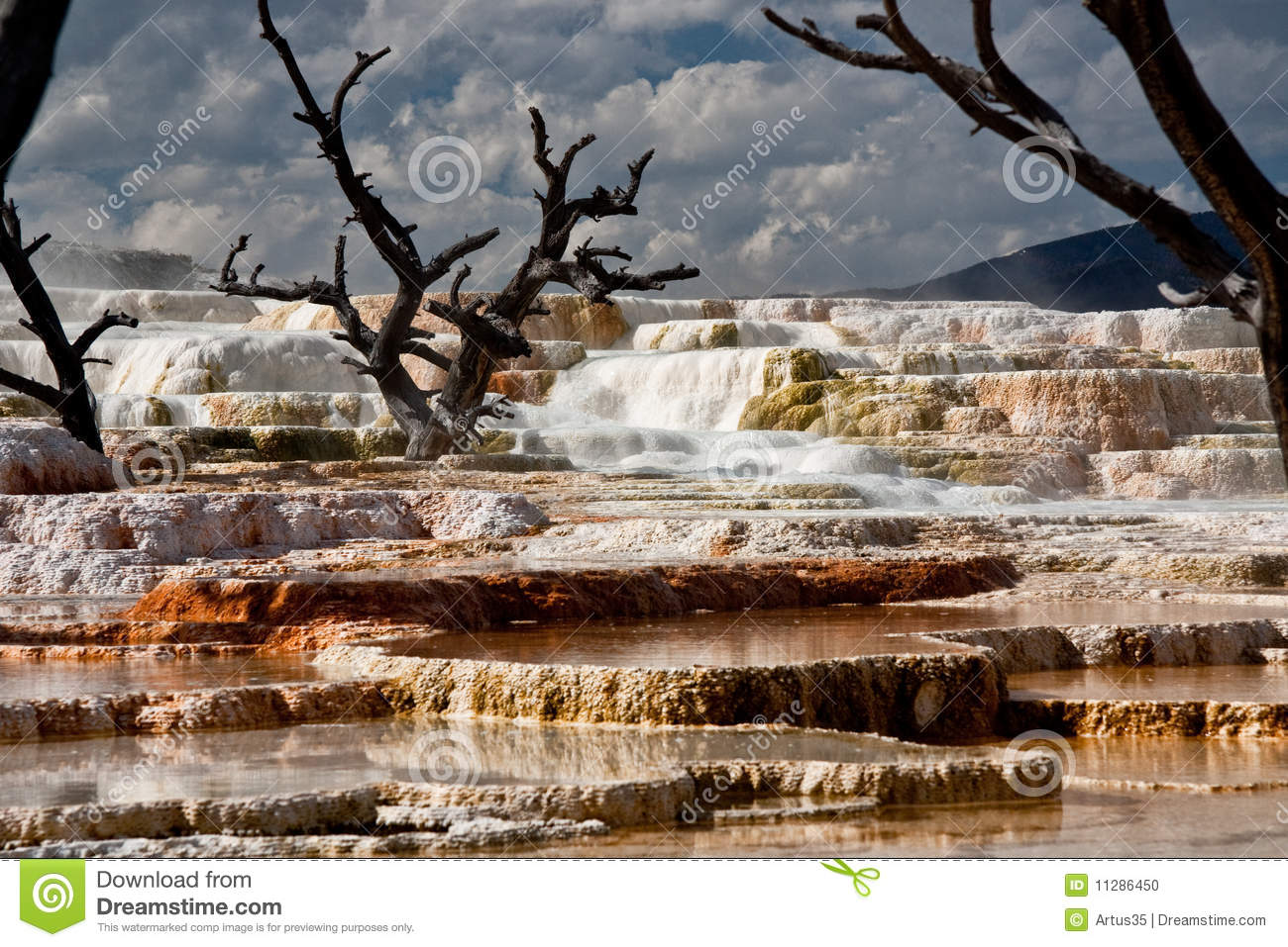 Mammoth Hot Springs At Yellowstone National Park 2 Stock Photo - Image ...