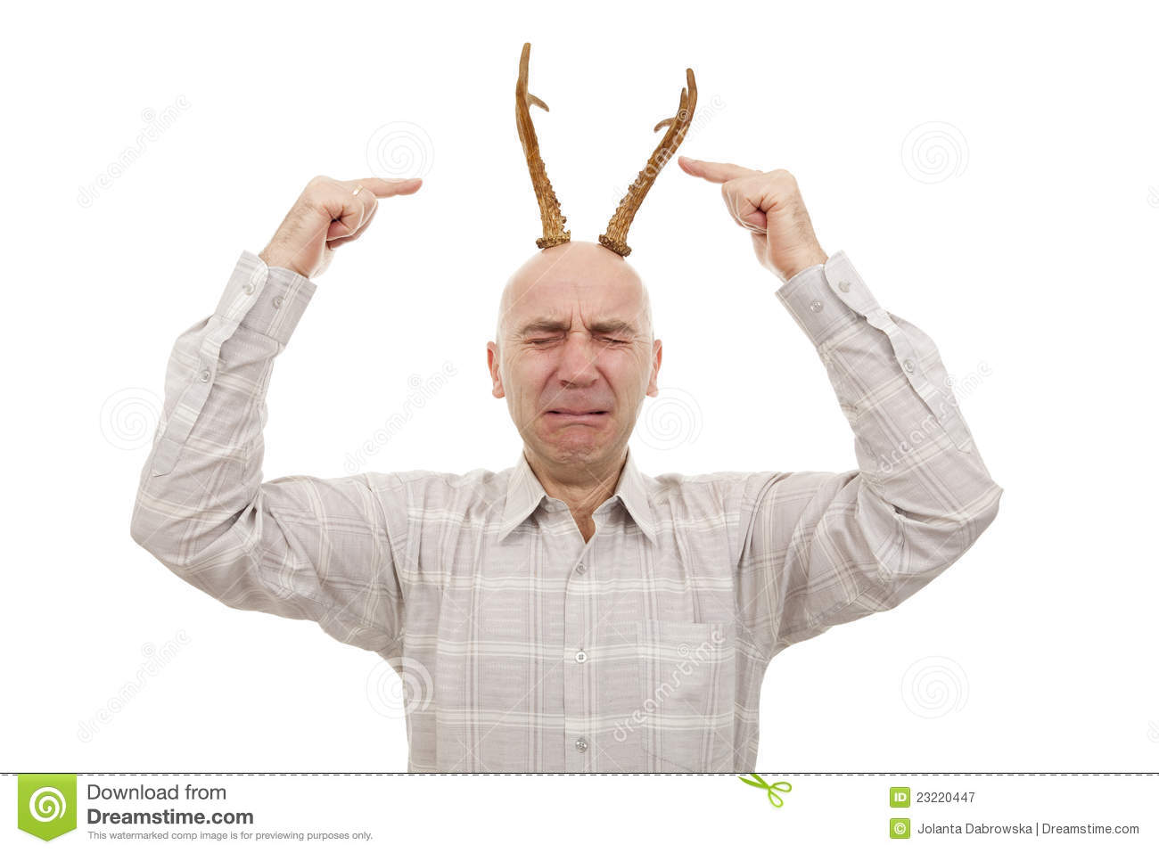elk horn men North american elk, or cervus elaphus, are split by some biologists into six   only male elk have antlers bulls shed and grow a new set of antlers every year.