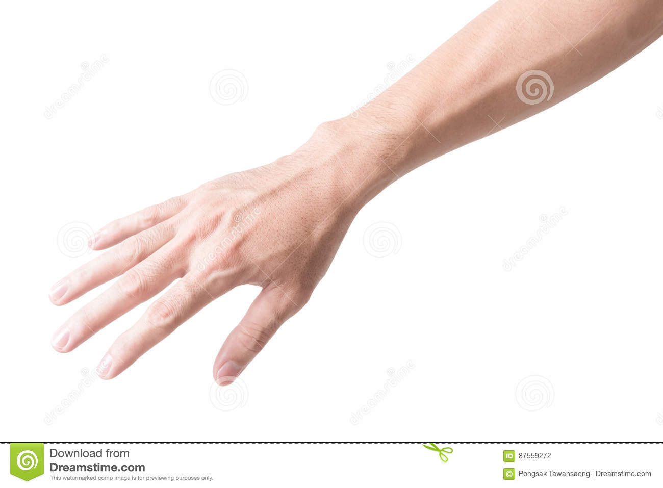 Man Arm With Blood Veins On White Background, Health Care And Me ...