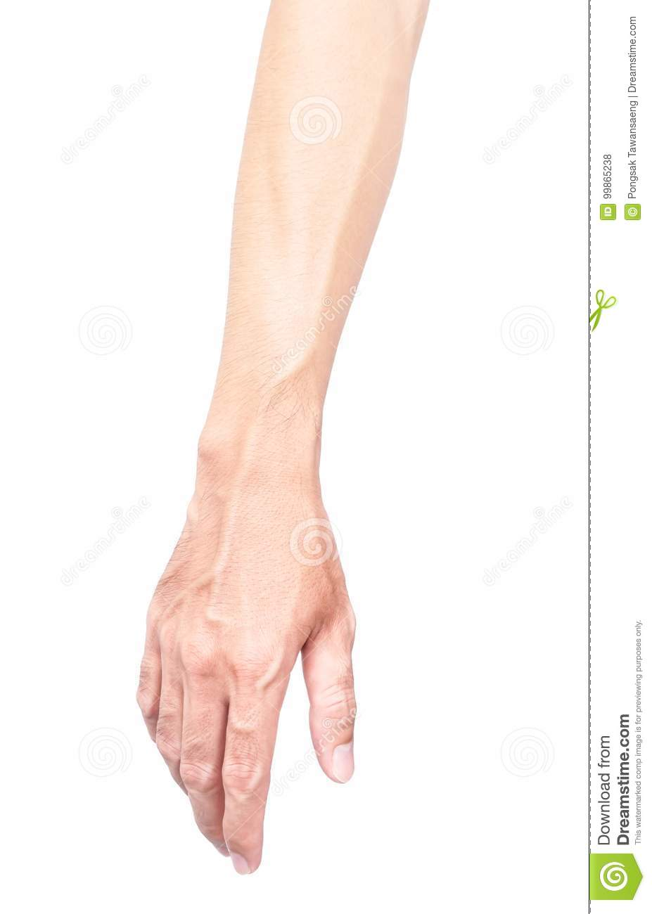 Man Arm With Blood Veins On White Background Health Care And Me