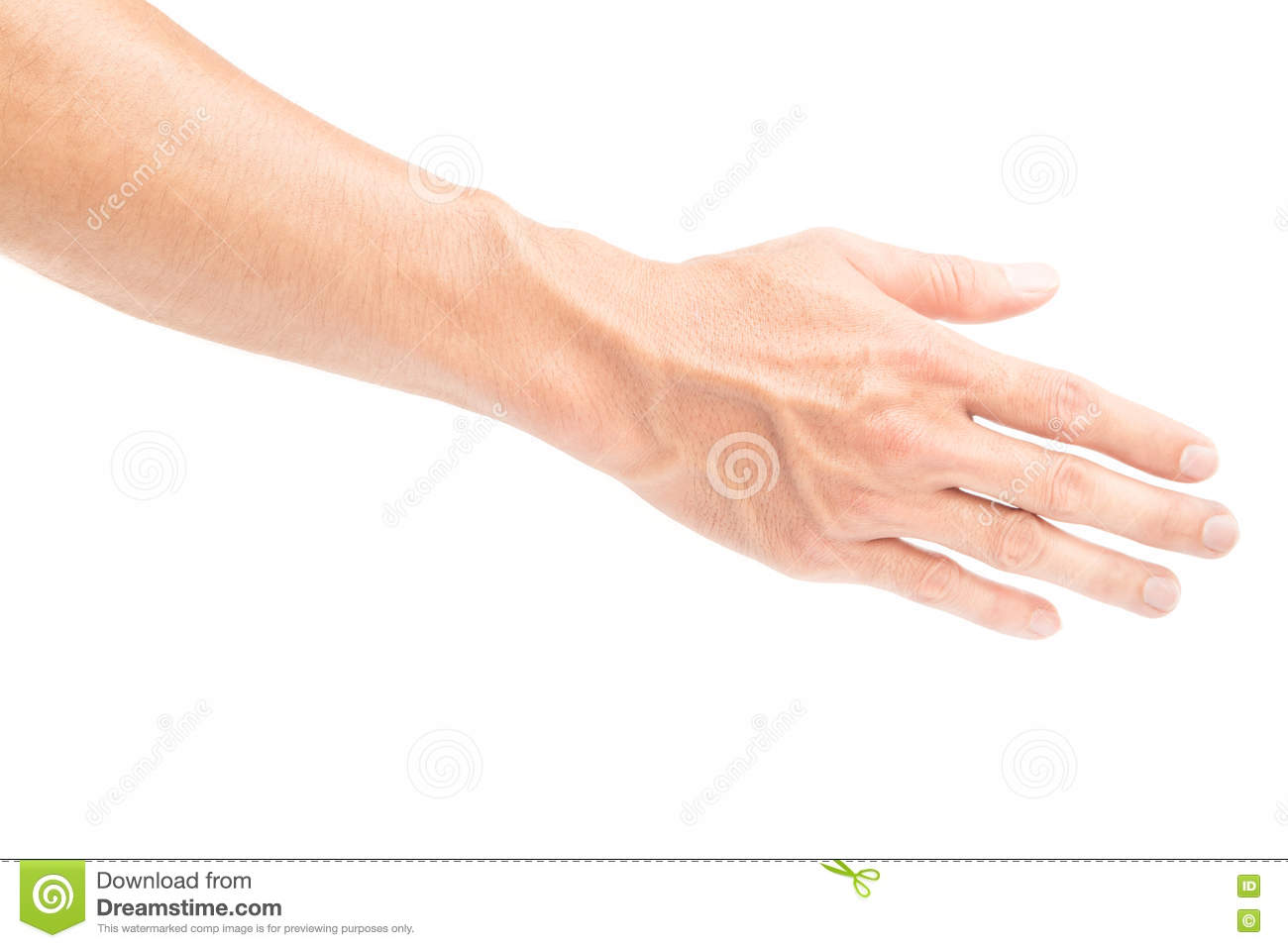 Man Back Hand With Blood Veins On White Background Health Care