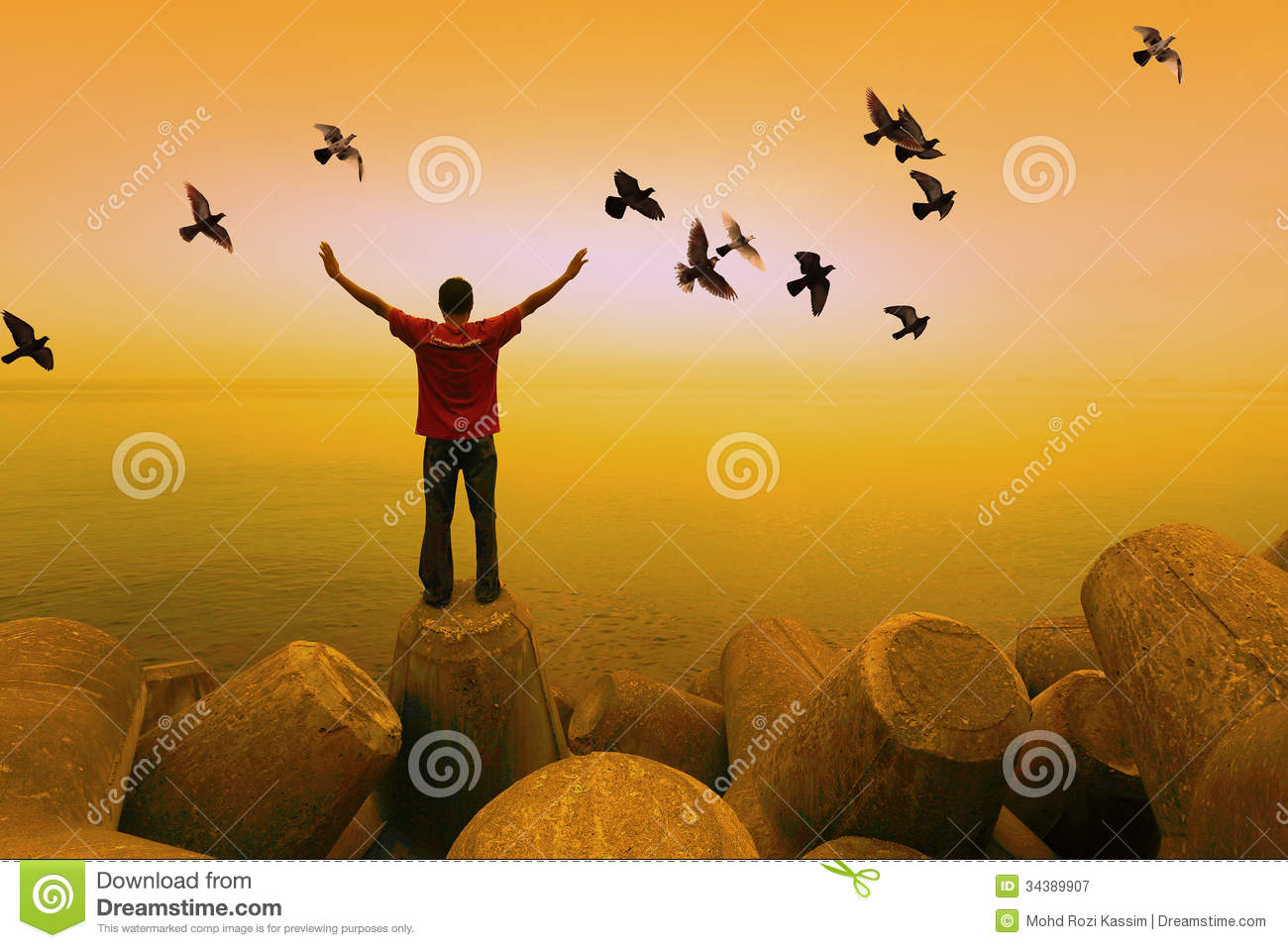 Royalty Free Stock Photography Man Birds Flying Standing Facing Sea Sk...
