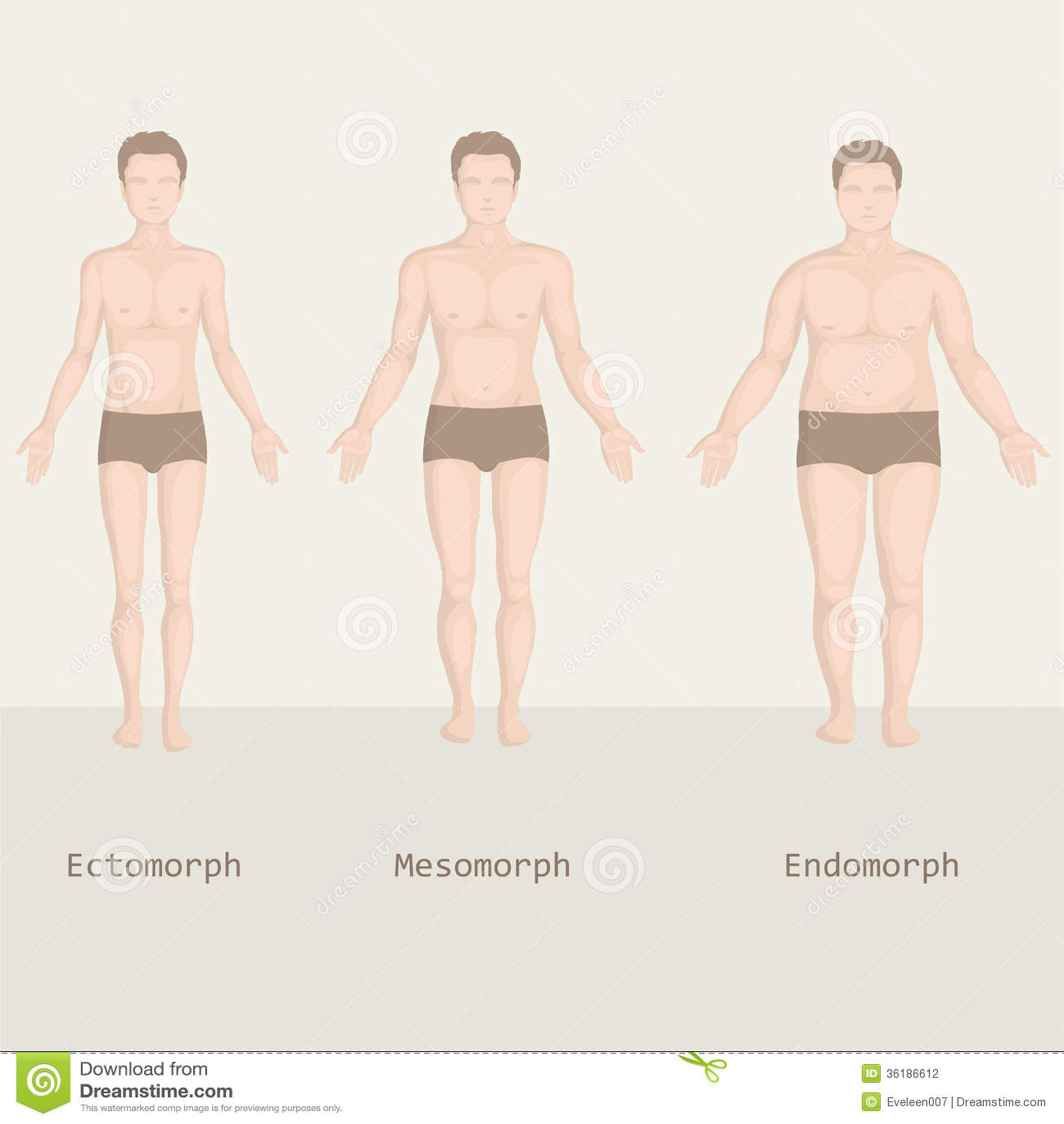 Body Fat Basics HowStuffWorks