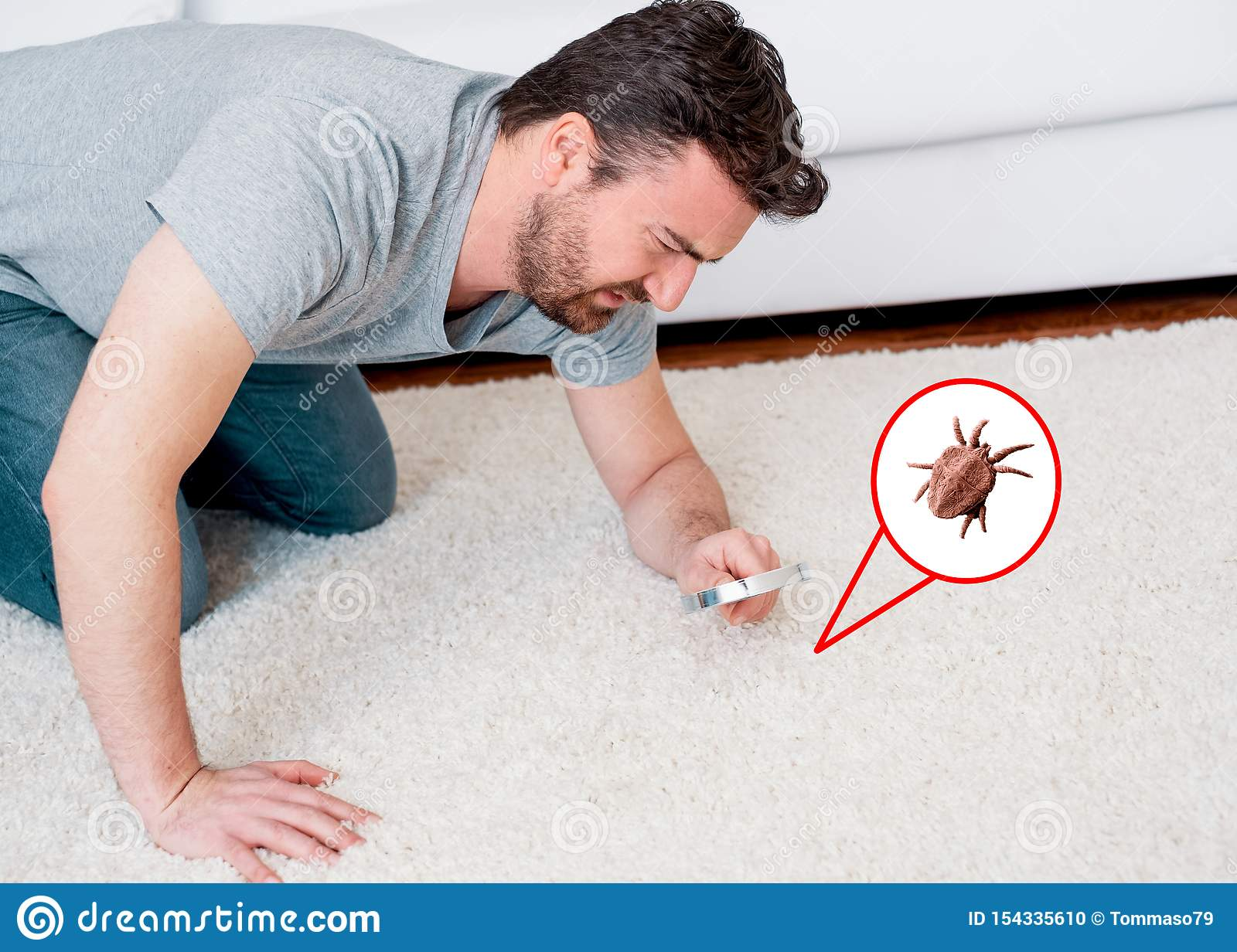Man checking for carpet dust mites and bug parasites