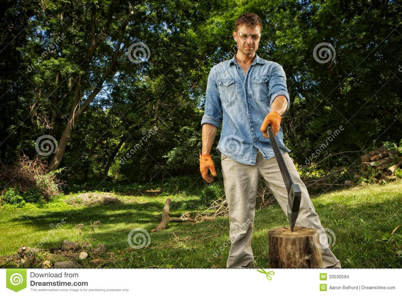 Man Chopping Wood Stock Images Image 33530594