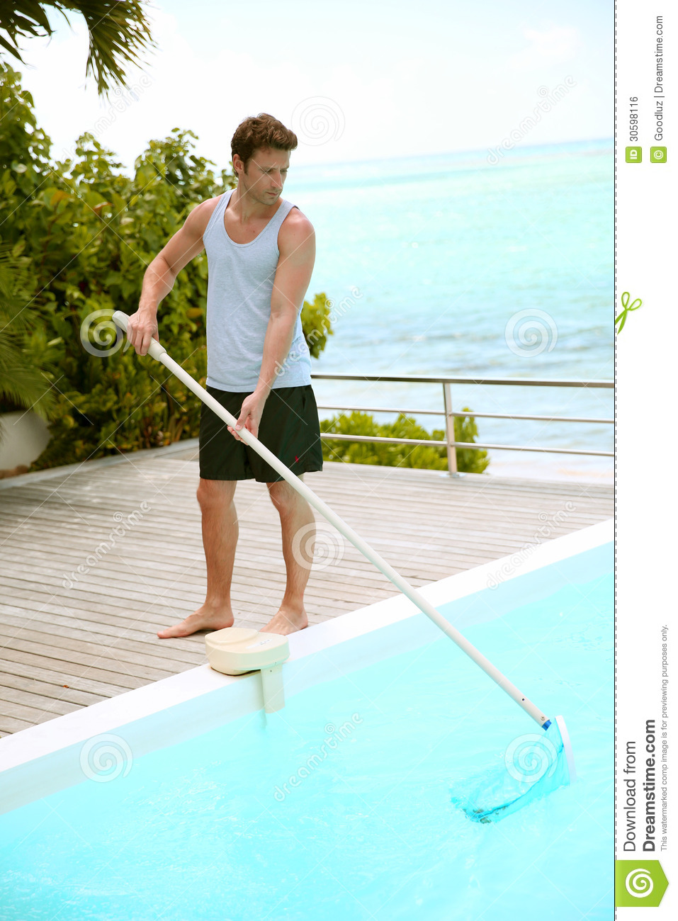 Man Cleaning Private Pool Stock Photo Image Of Condo 30598116