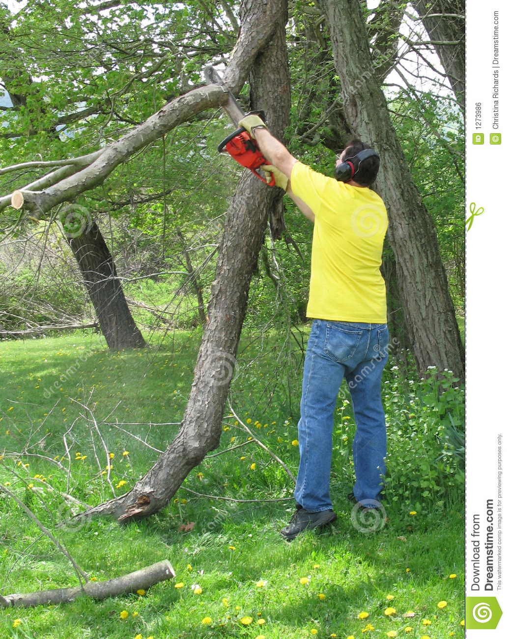 Man cutting a branch with a chainsaw