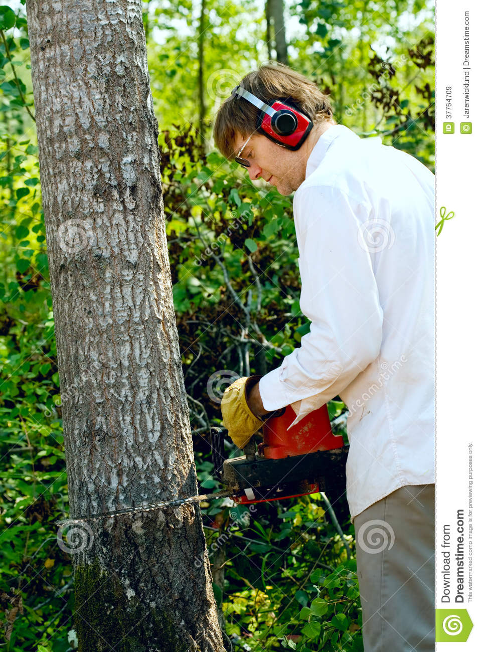 Man cutting down a tree with a chainsaw