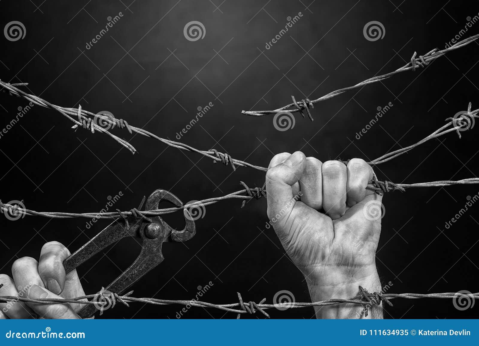 Man is Cutting a Fence
