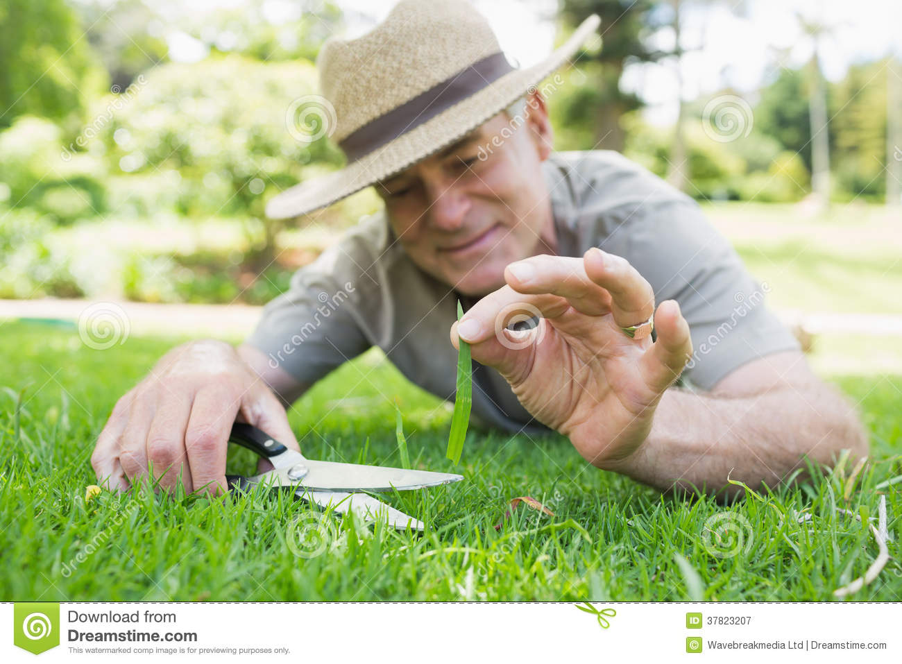 Man Cutting Grass With Scissors Royalty Free Stock