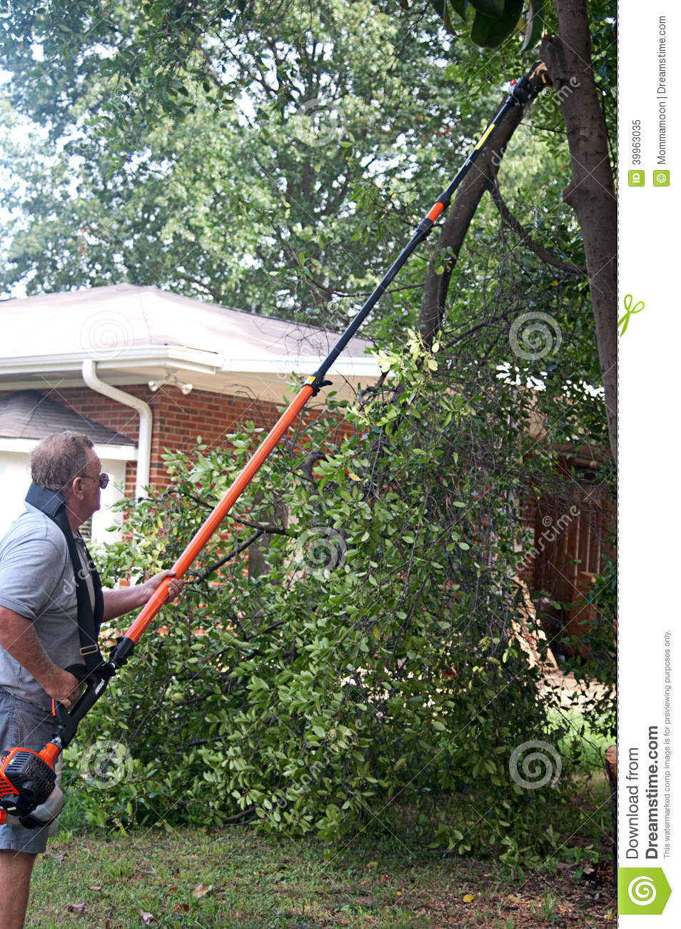 Tractor Man On Cutting Trees : Man cutting tree limbs stock photo image