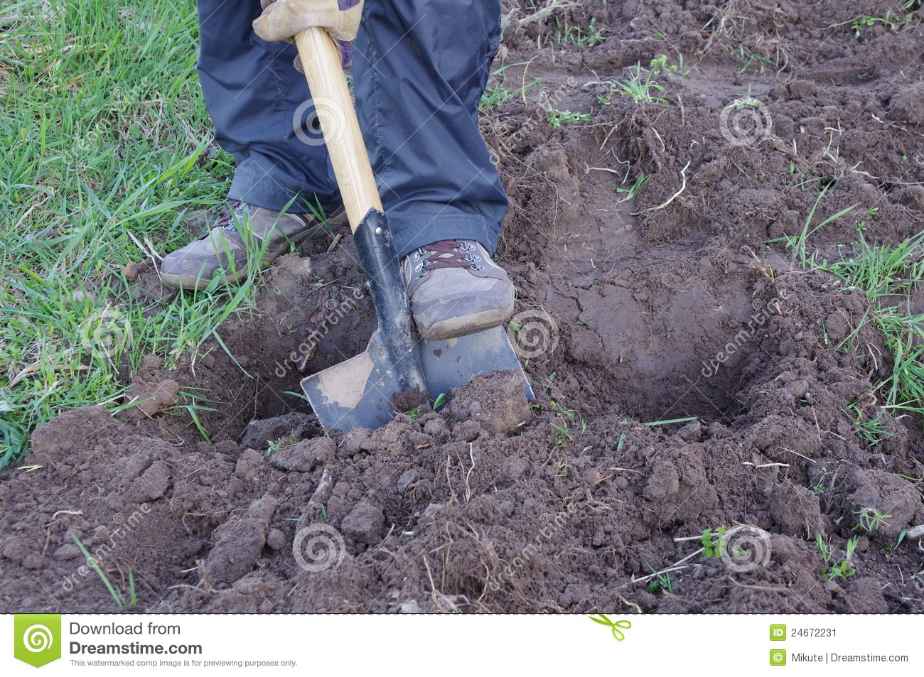 man digging ground and preparing for planting stock image