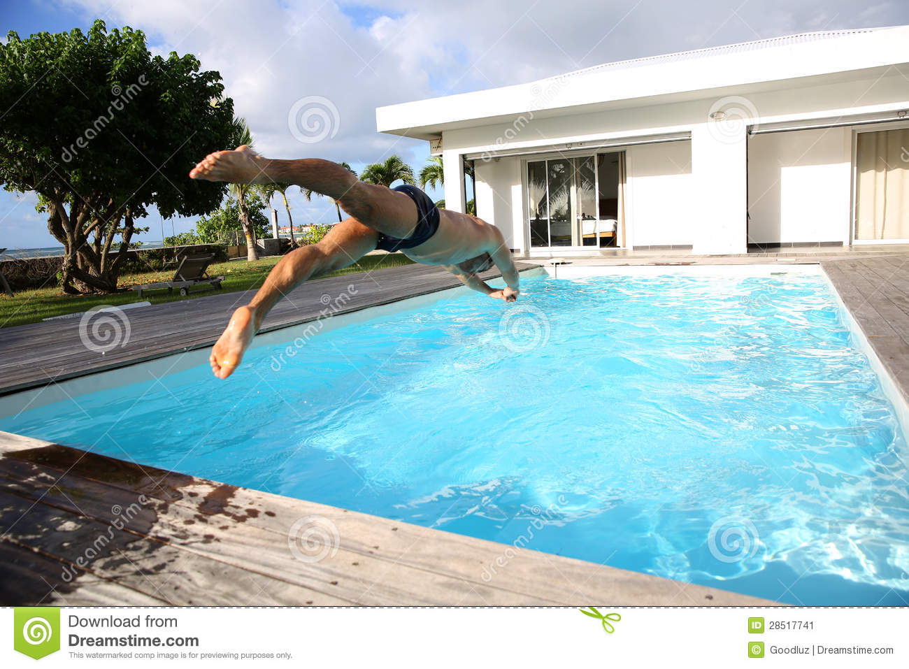 man diving in swimming pool stock image image 28517741