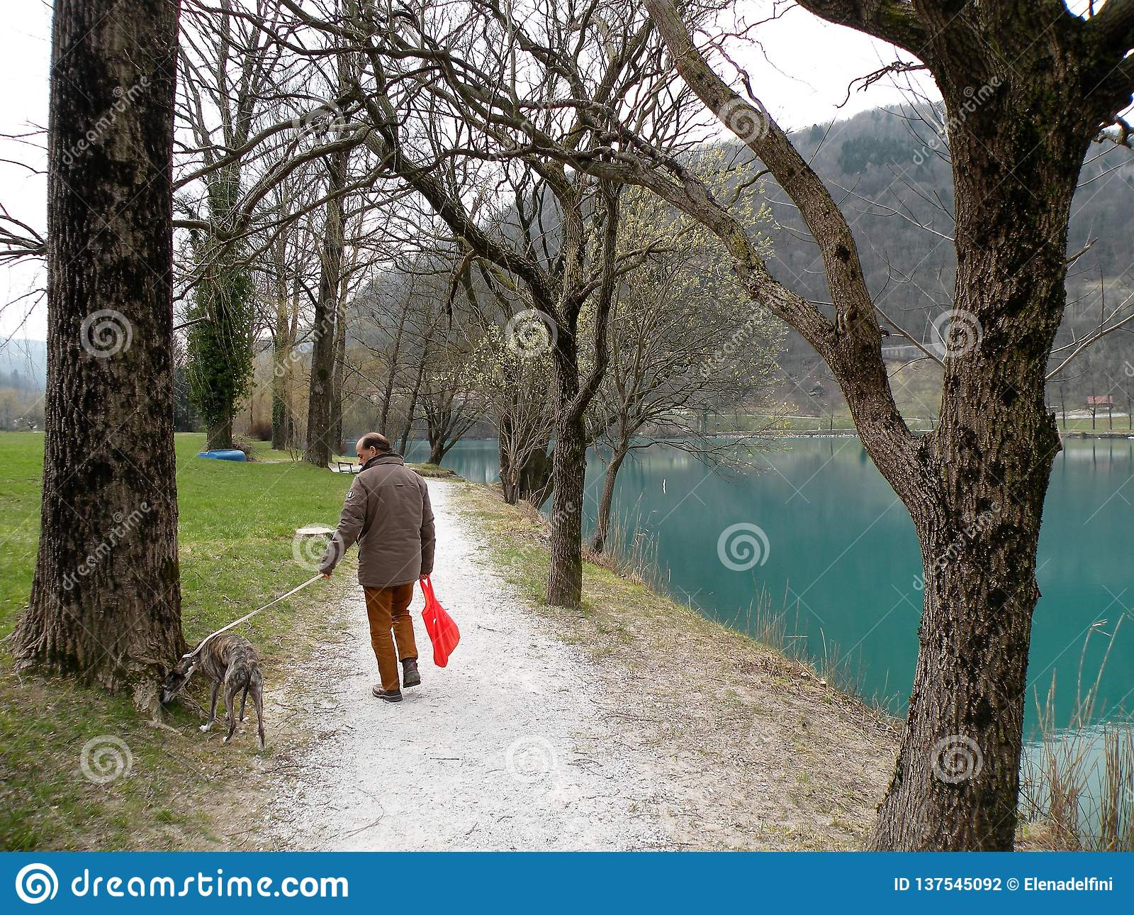 Man with the dog near the mountain lake with turquoise blue water and old tree