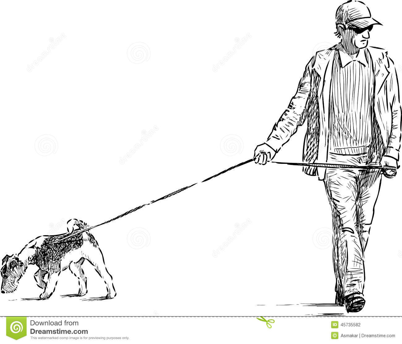 how to get a dog to walk