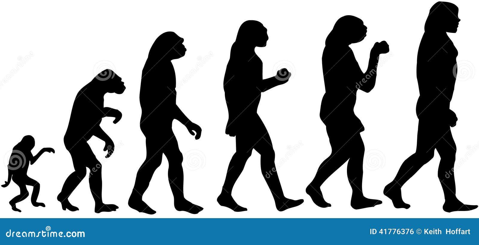 Evolution of human intelligence
