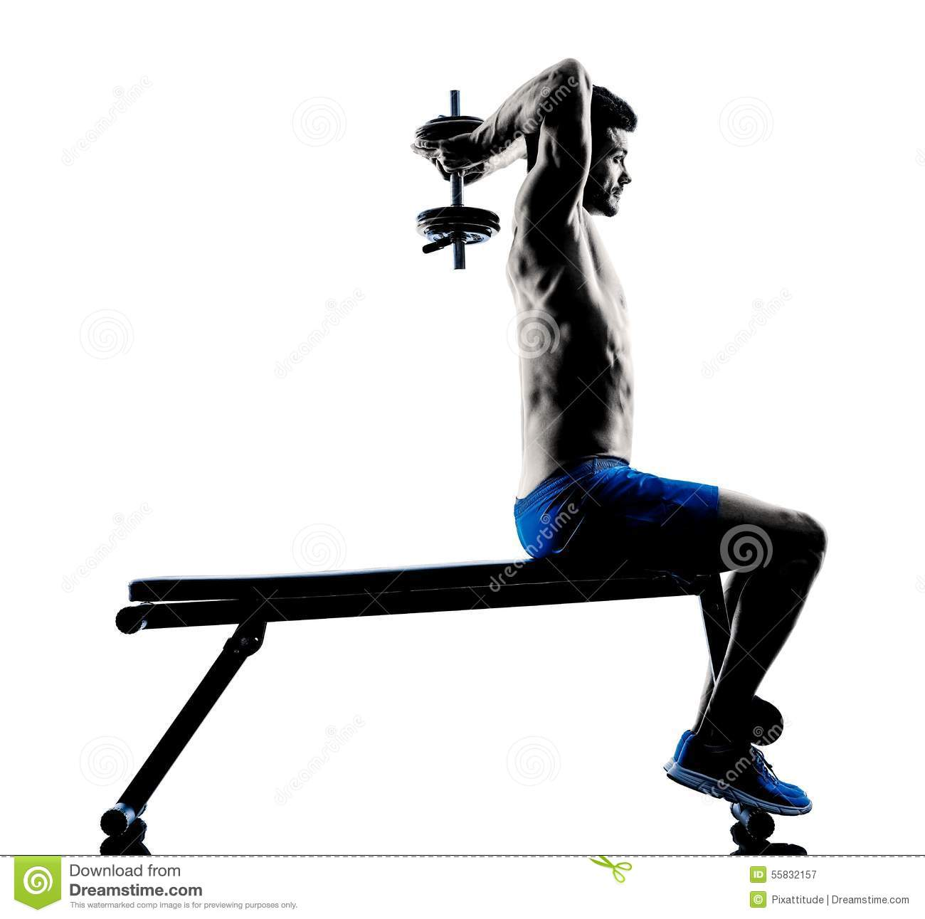 Bench Press Person: Man Exercising Fitness Weights Bench Press Exercises