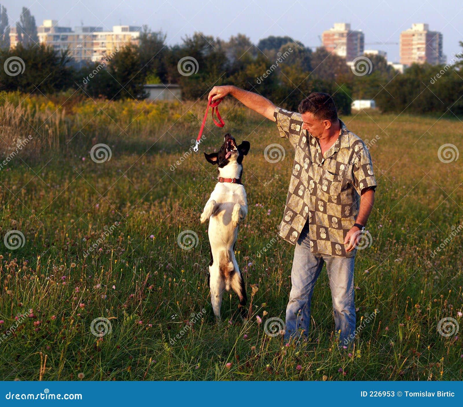 Man för hundescapekamratskap