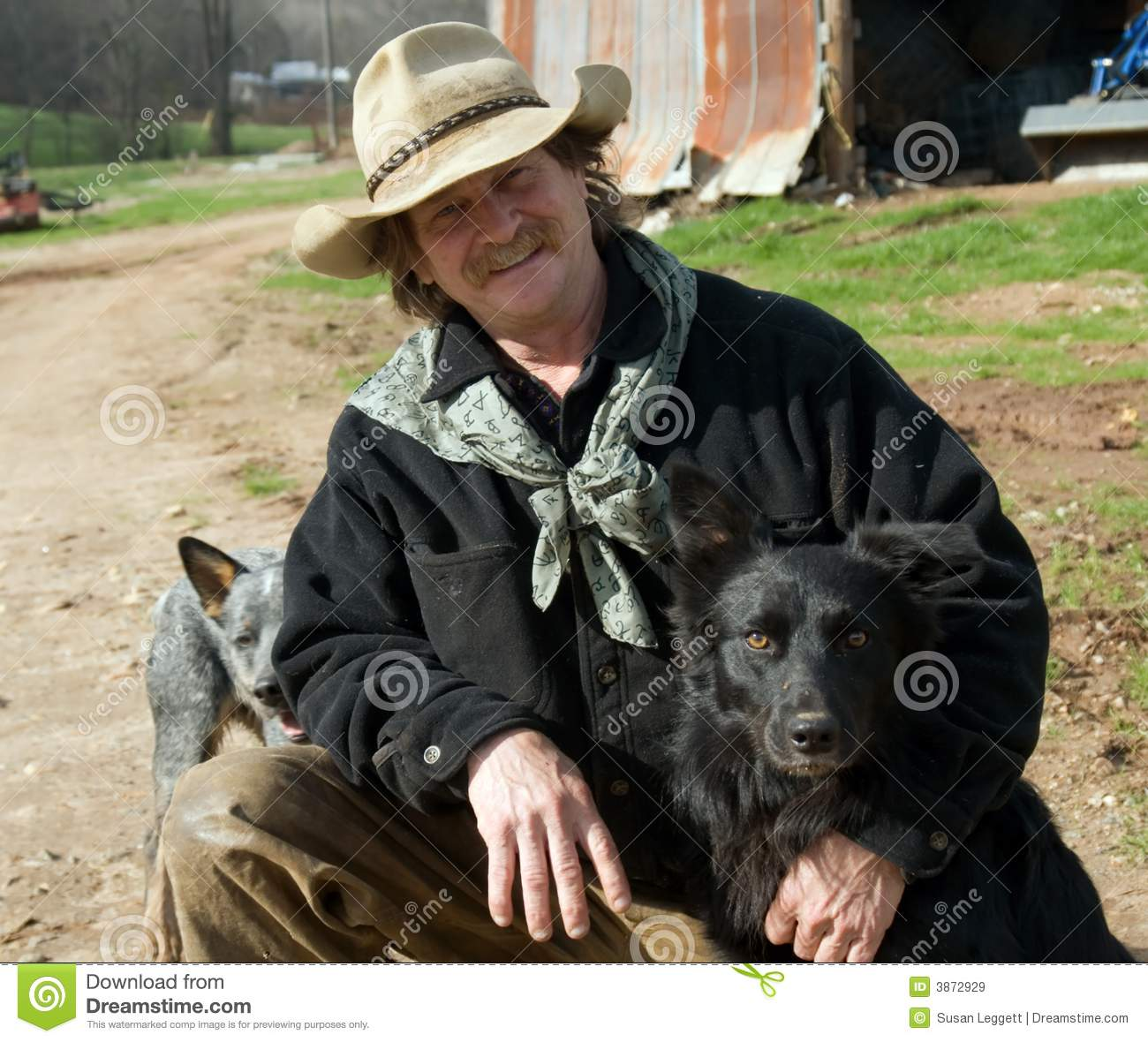 Man on farm with his dogs