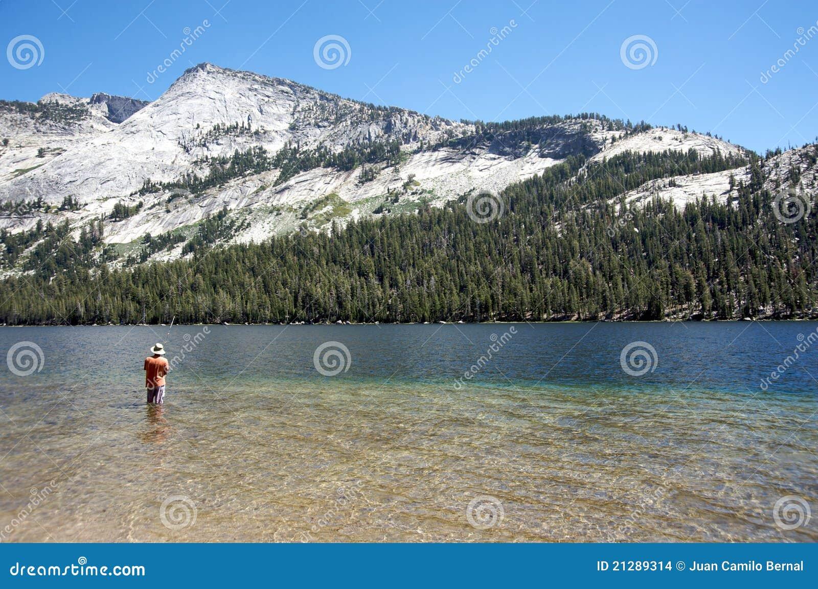 Man fishing in a lake in yosemite stock images image for Fishing in yosemite