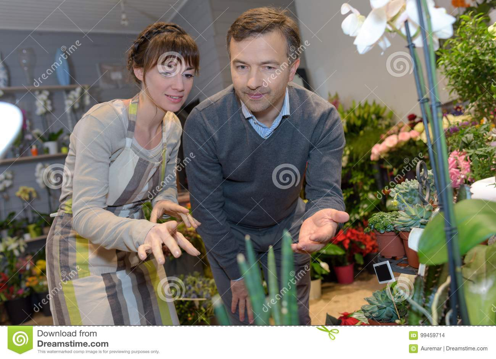 Man getting consultation in nursery shop from gardener