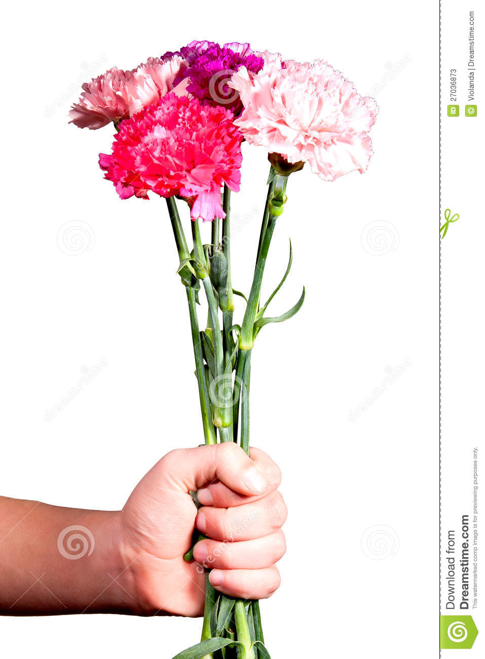 Man Gives A Bouquet Of Flowers Stock Photos Image 27036873