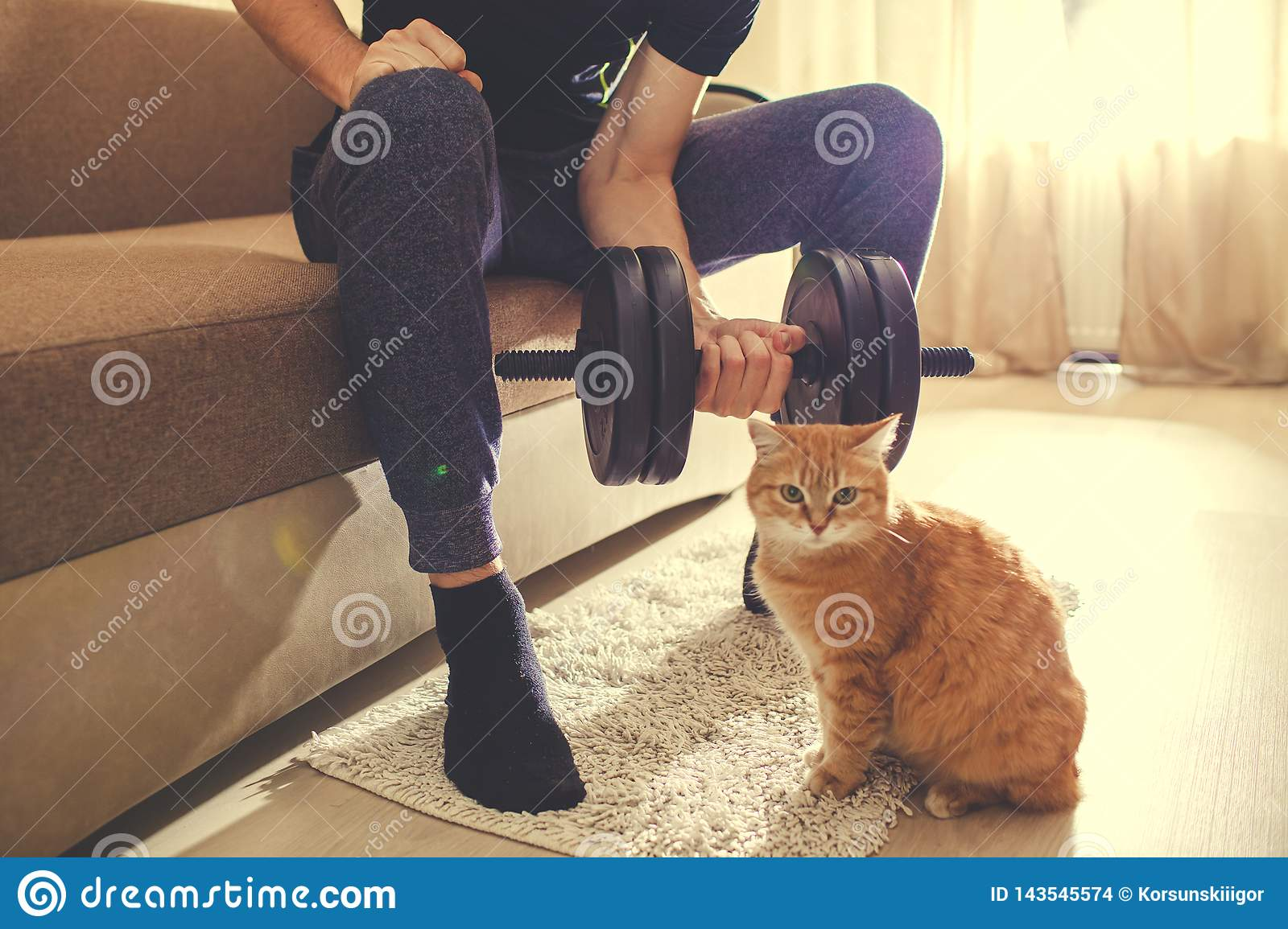 A man goes in for sports at home with dumbbells with a cat