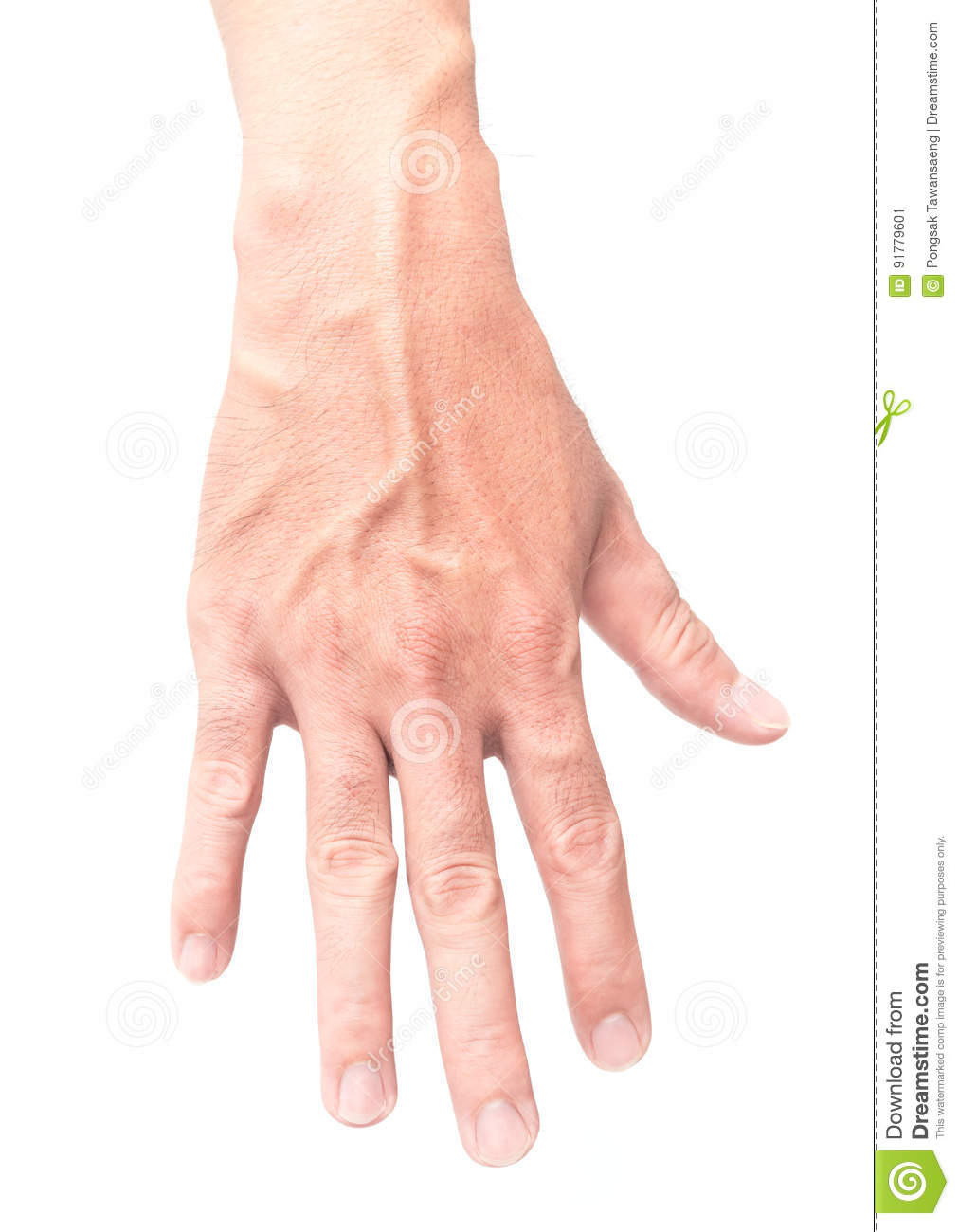 Man Hand With Blood Veins On White Background Health Care And M