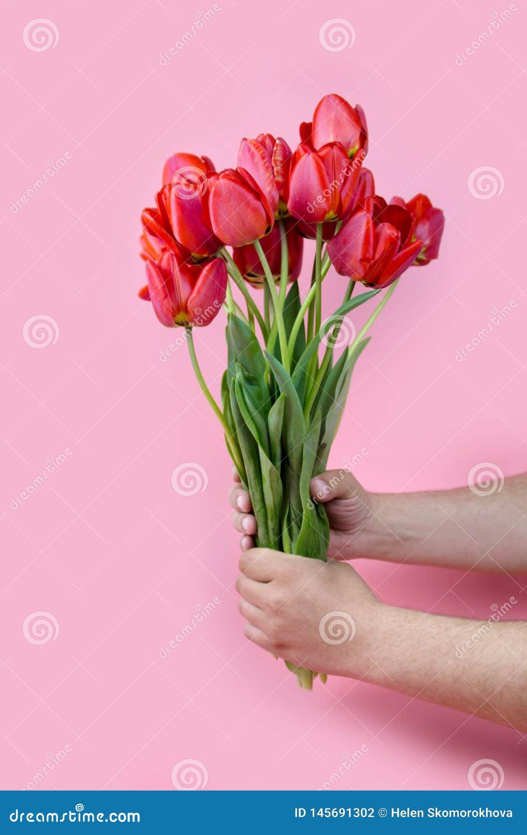 Man hand die uit een bos van gele tulpen op blauwe achtergrond met exemplaarruimte bereiken