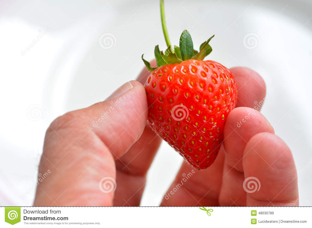 strawberry single men Strawberry nutrition strawberries are packed with vitamins and minerals such as vitamins c and k, folate, potassium, manganese, and magnesium  let's look at the most popular health benefits of strawberries in detail below  a single serving has approximately 150% of your daily requirement of vitamin c.