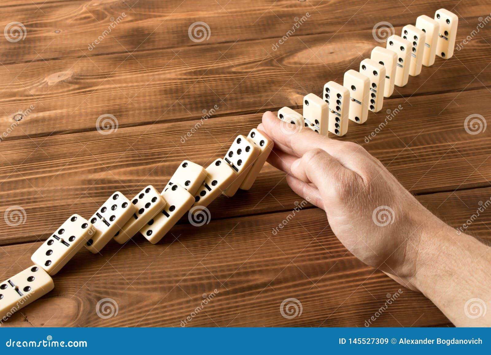 Man hand met domino Het spelen domino s op een houten lijst Rode stukken die, ge?soleerda op witte achtergrond neer vallen