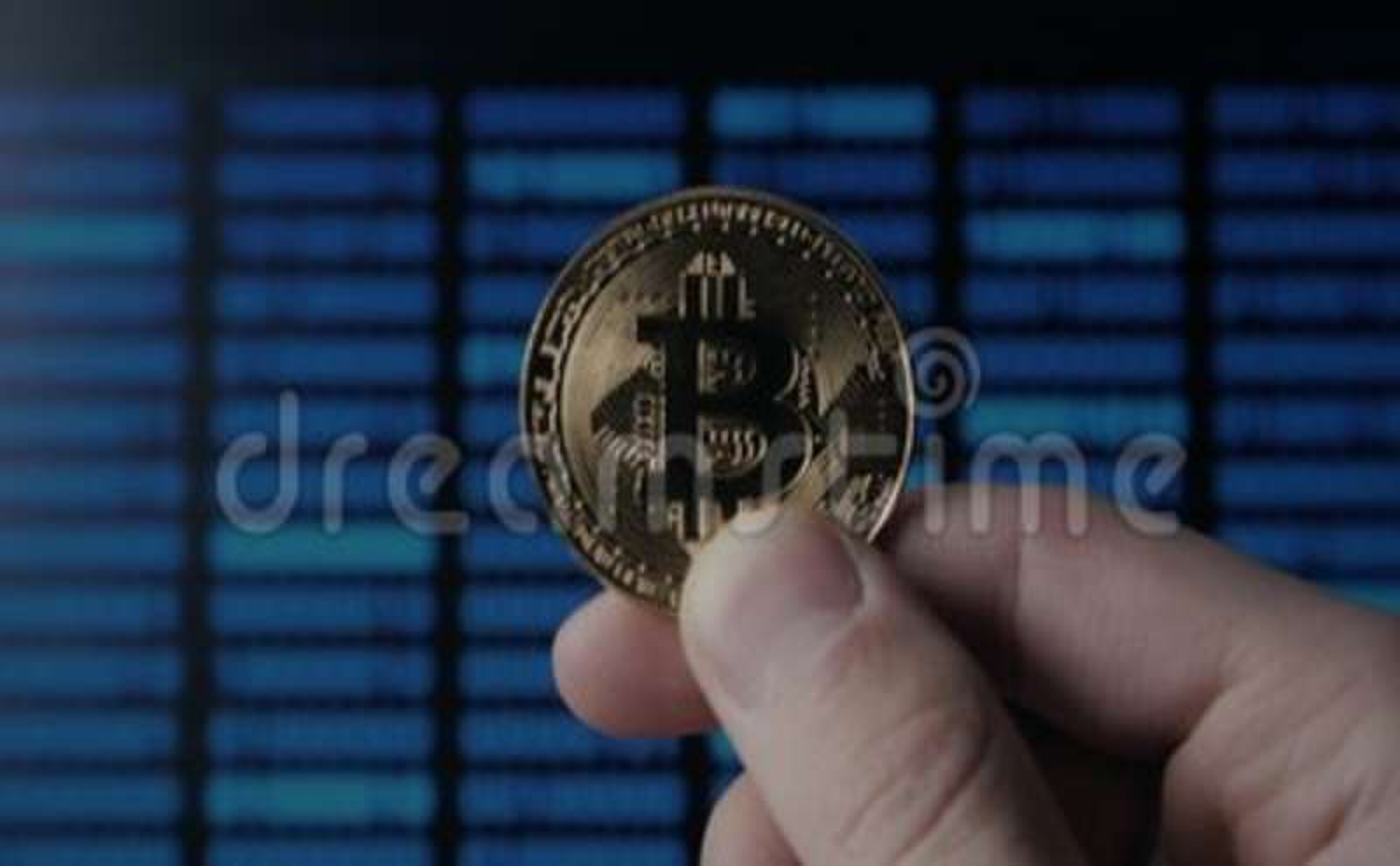 Top binary option traders
