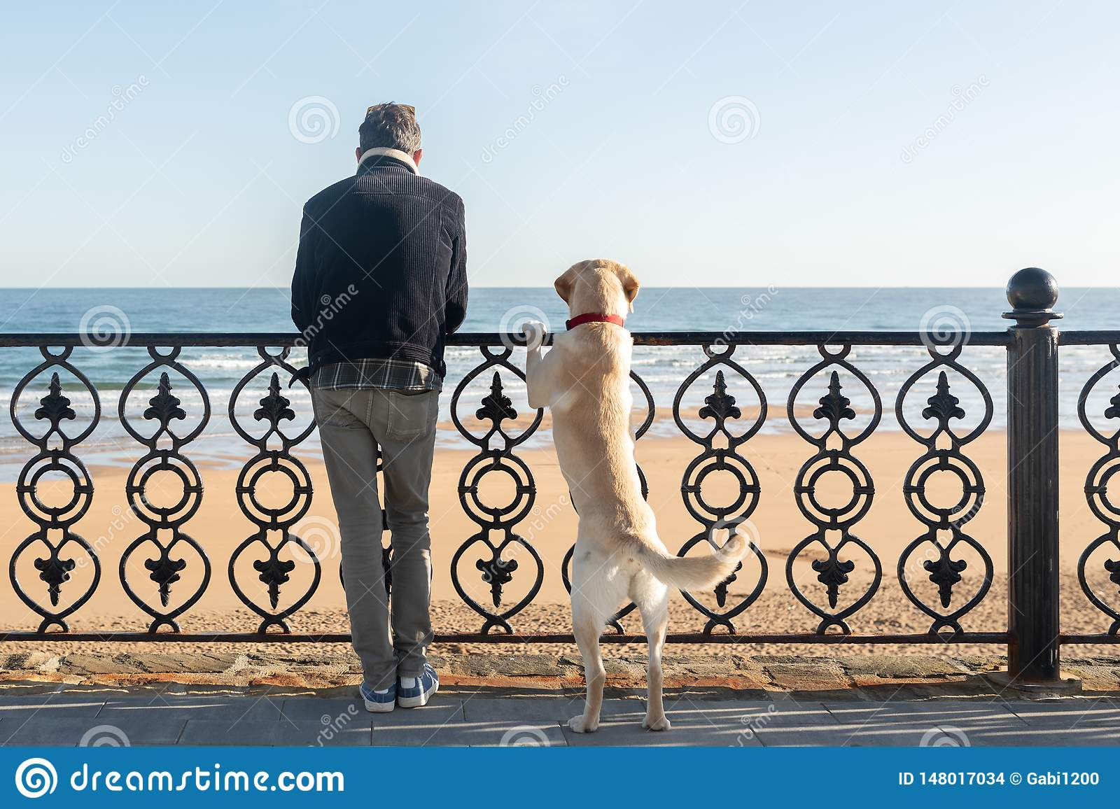 A man with his dog leaning on a railing watching the sea in the background