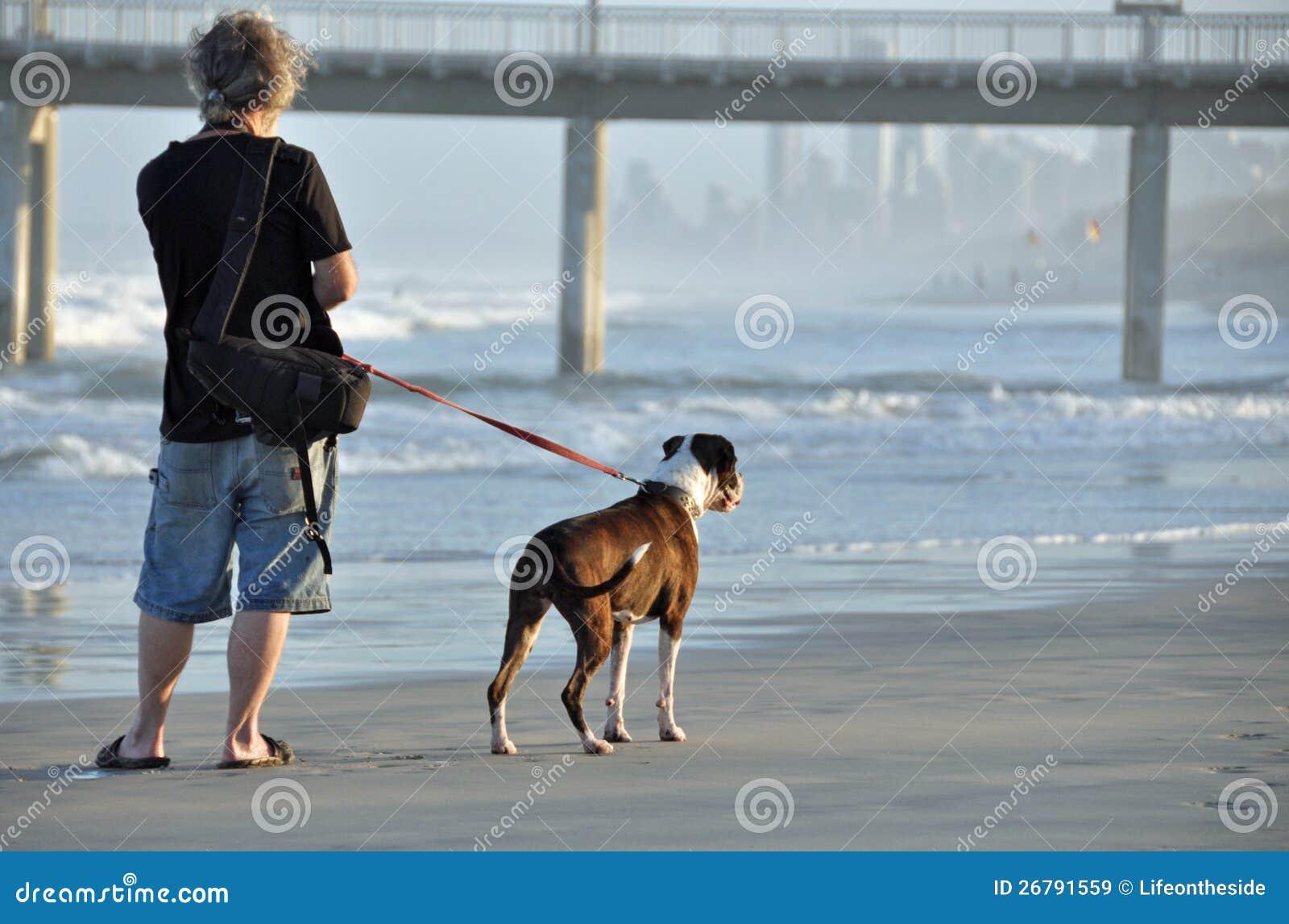 Dog Walking Prices Australia