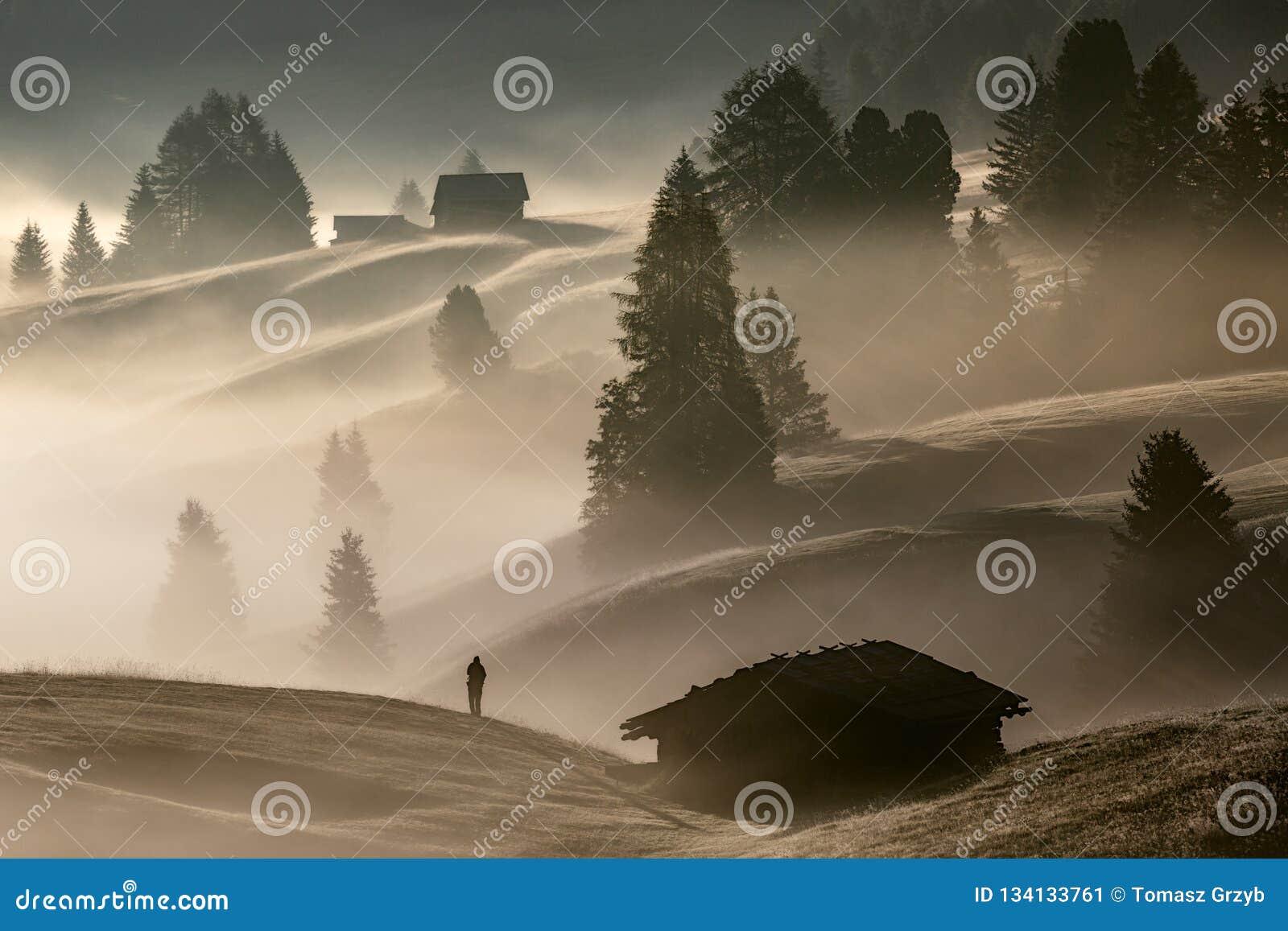 Man i dimman