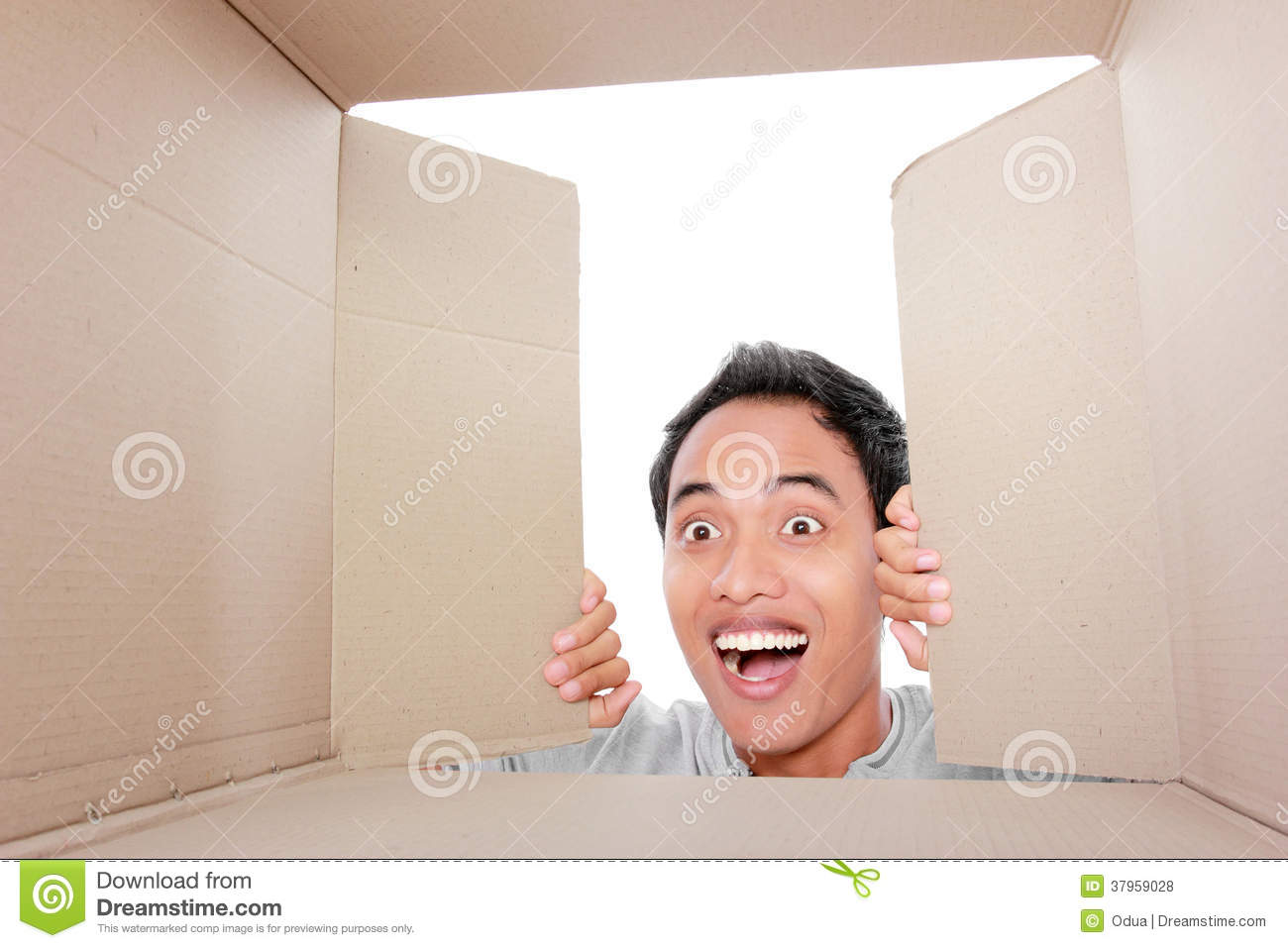 Man Looking For Something Inside Box Stock Photo
