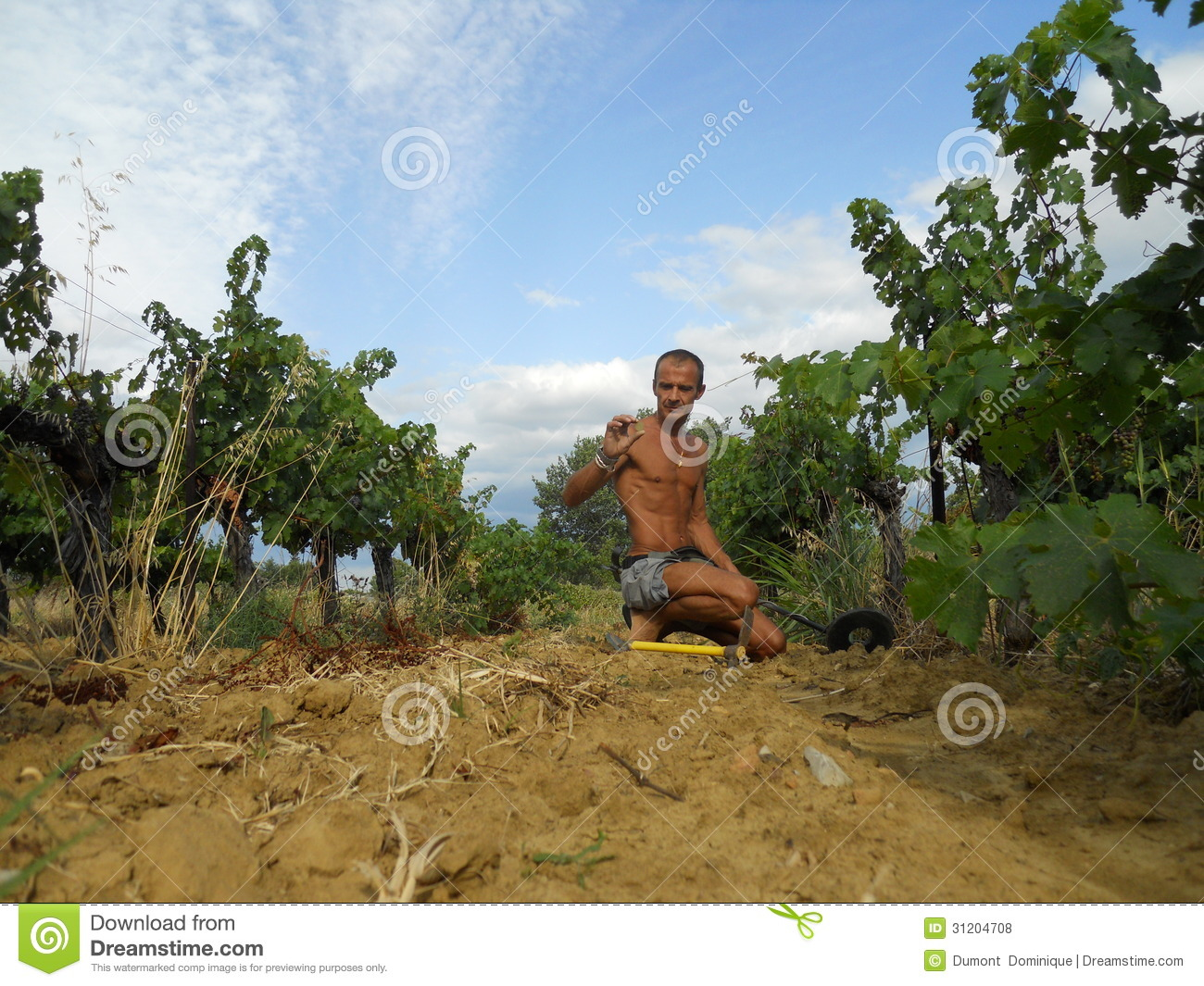 Jew Detector: Man,metal Detecting Editorial Stock Photo