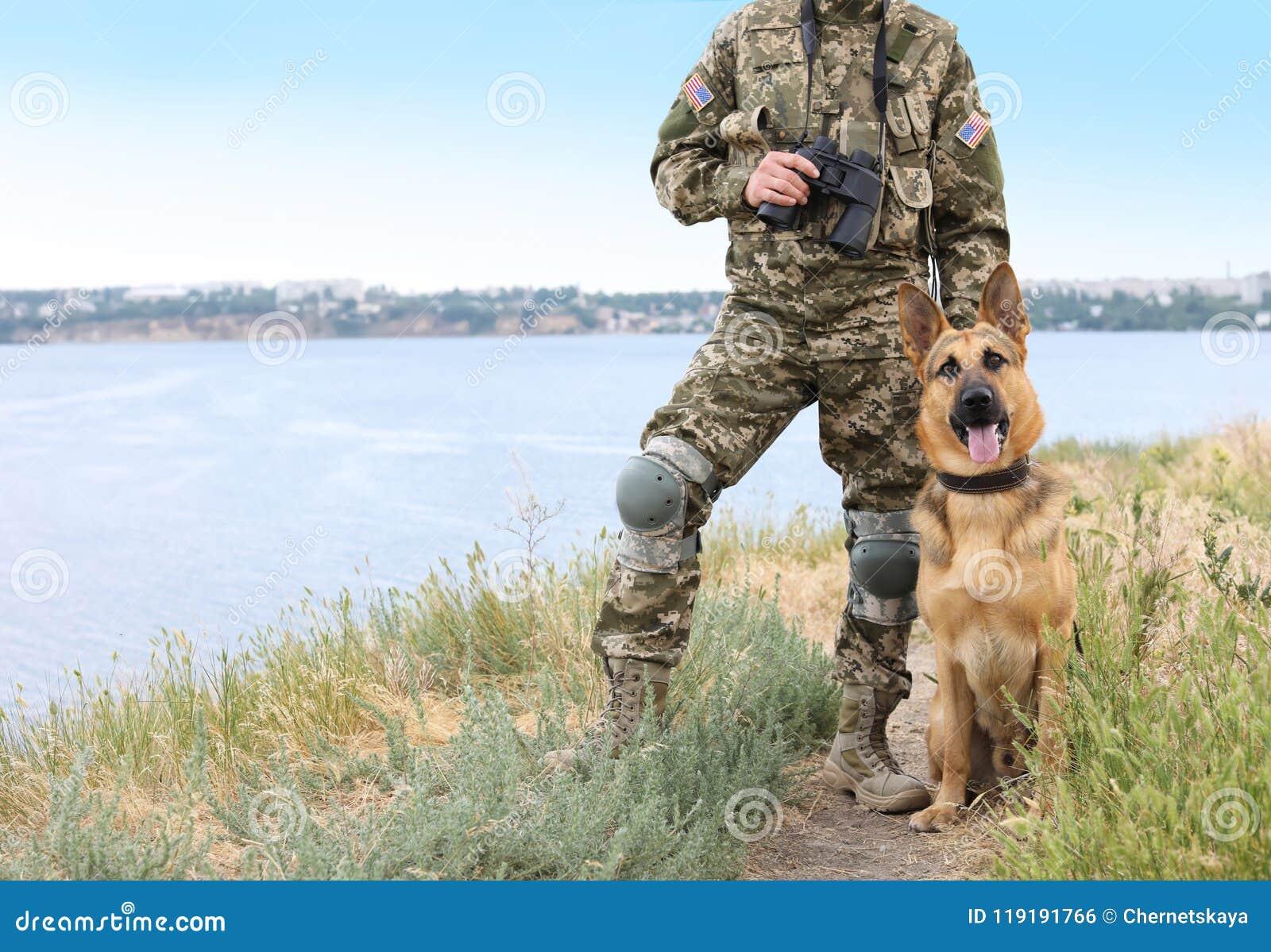 Man In Military Uniform With German Shepherd Dog Stock Photo Image