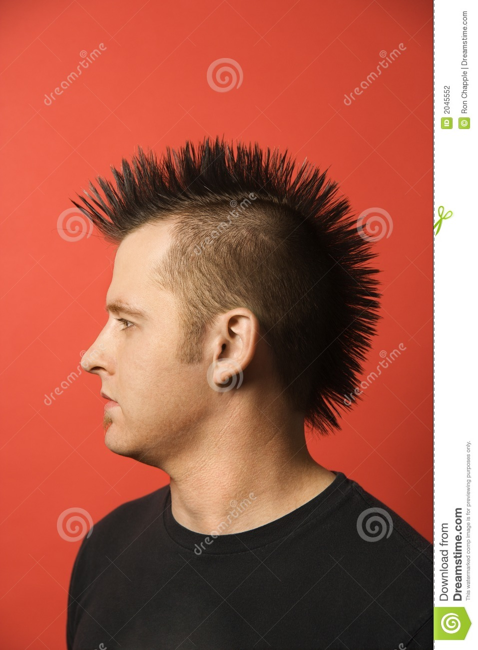 Fashion design contest 2017 - Man With Mohawk Stock Photography Image 2045552