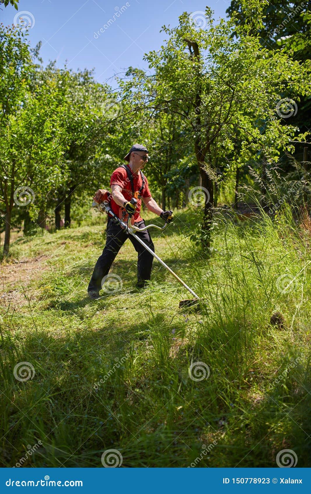 Man Mowing, Cutting Grass On His Huge Garden Yard, Green