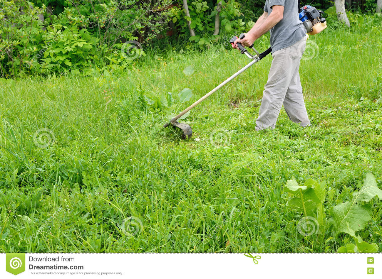 man mowing lawn mower green young grass gardener doing seasonal man mowing lawn mower green young grass gardener doing seasonal work clearing the