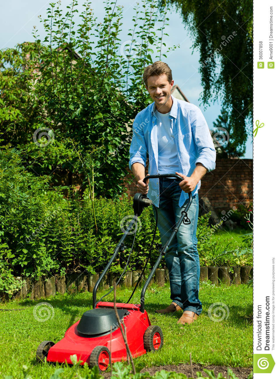 man is mowing the lawn in summer stock photo image 36007858