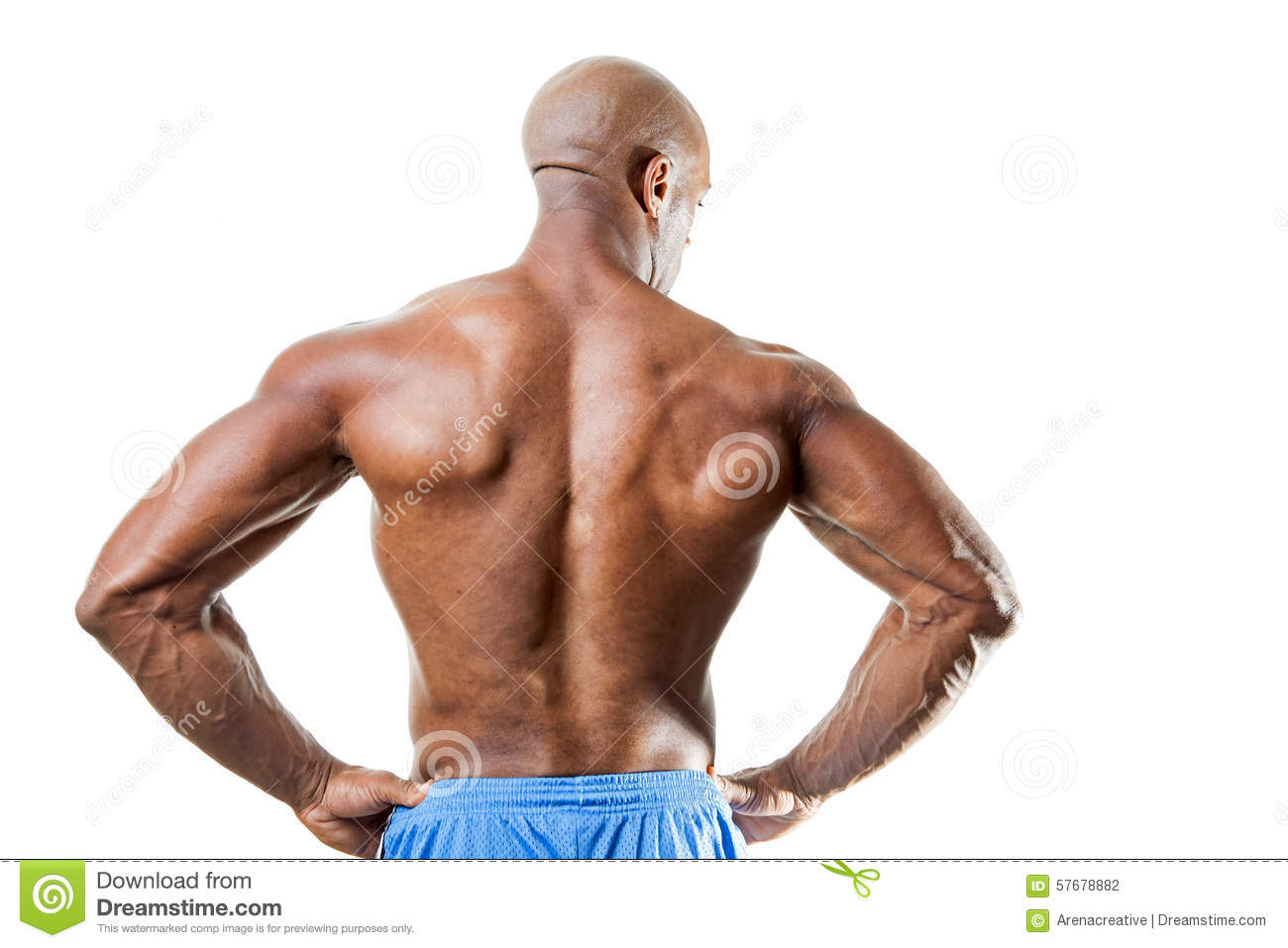 Man with Muscular Back stock photo. Image of arms, body - 57678882